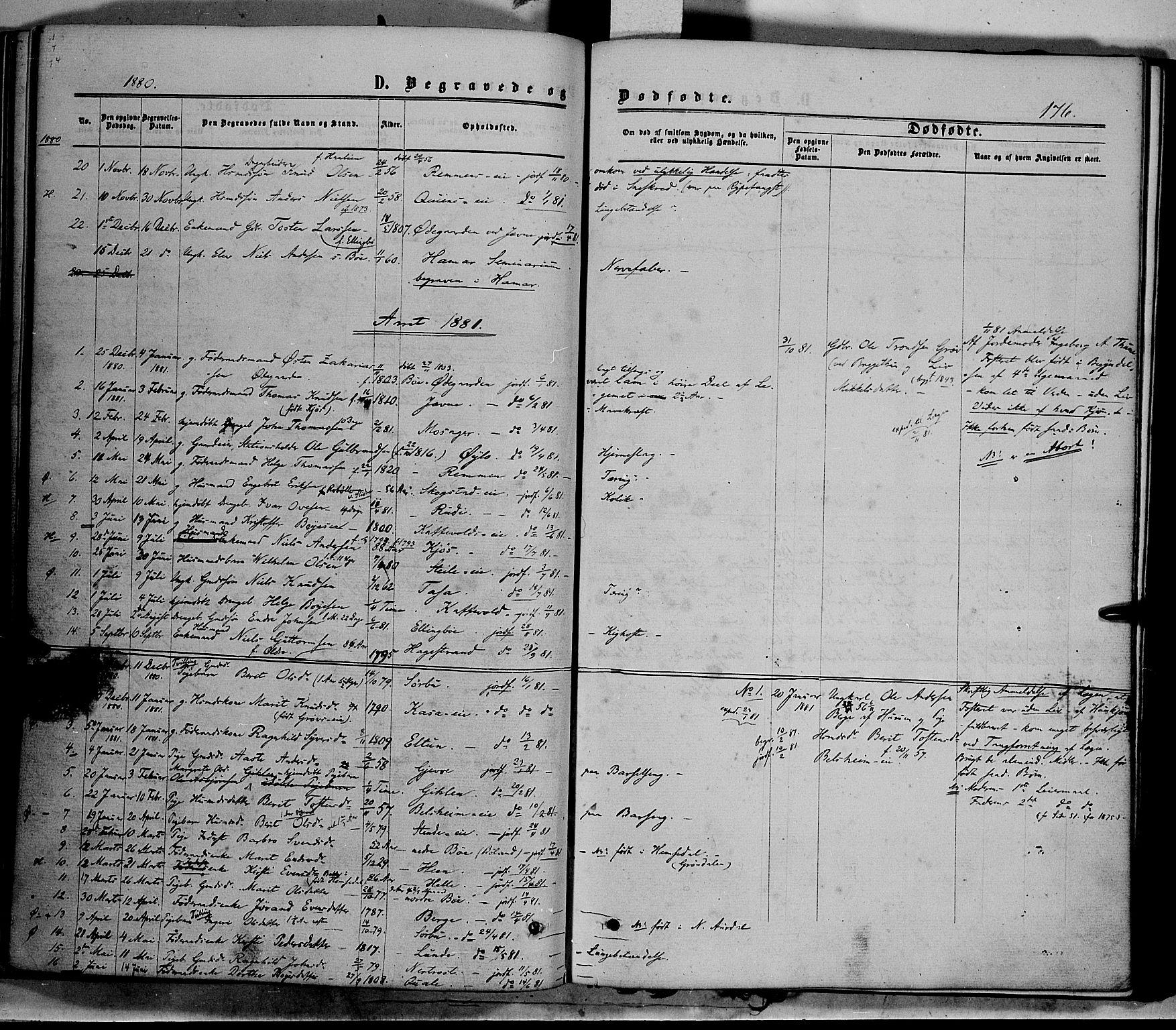 SAH, Vang prestekontor, Valdres, Ministerialbok nr. 7, 1865-1881, s. 176