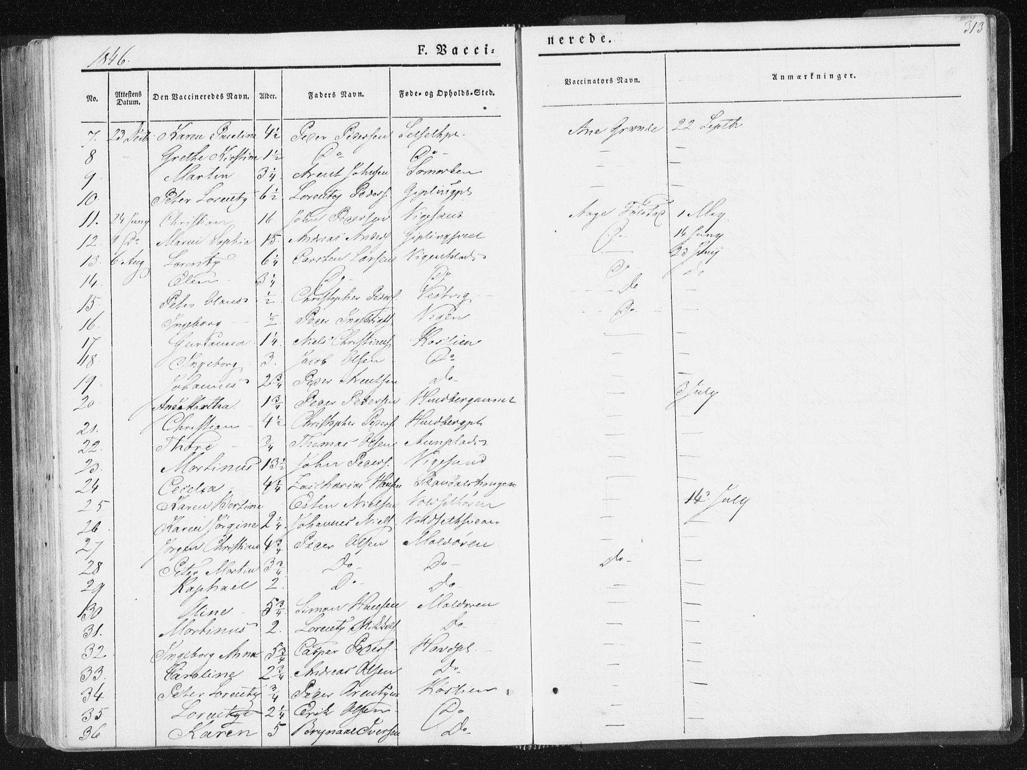 SAT, Ministerialprotokoller, klokkerbøker og fødselsregistre - Nord-Trøndelag, 744/L0418: Ministerialbok nr. 744A02, 1843-1866, s. 313