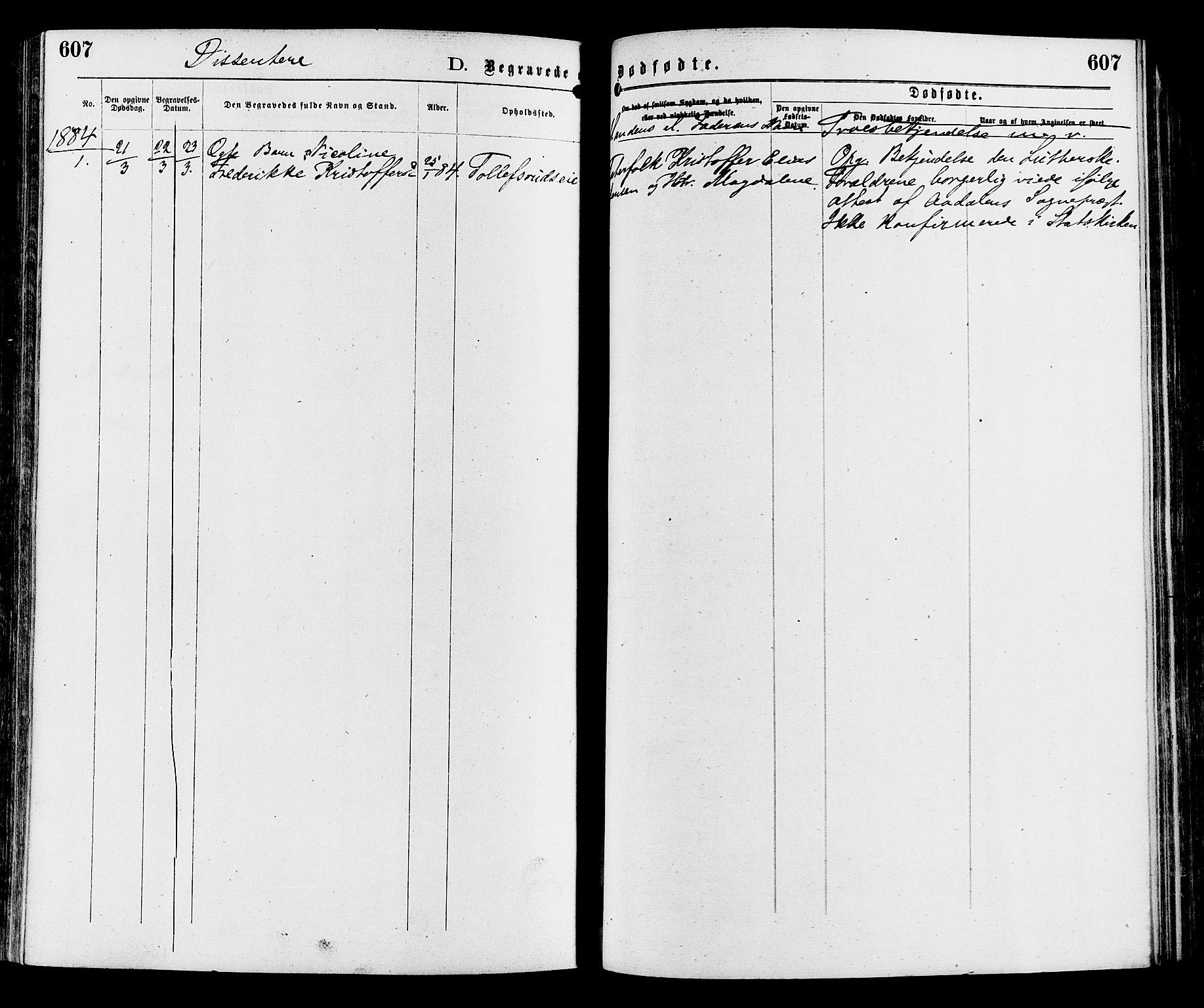 SAH, Sør-Aurdal prestekontor, Ministerialbok nr. 8, 1877-1885, s. 607