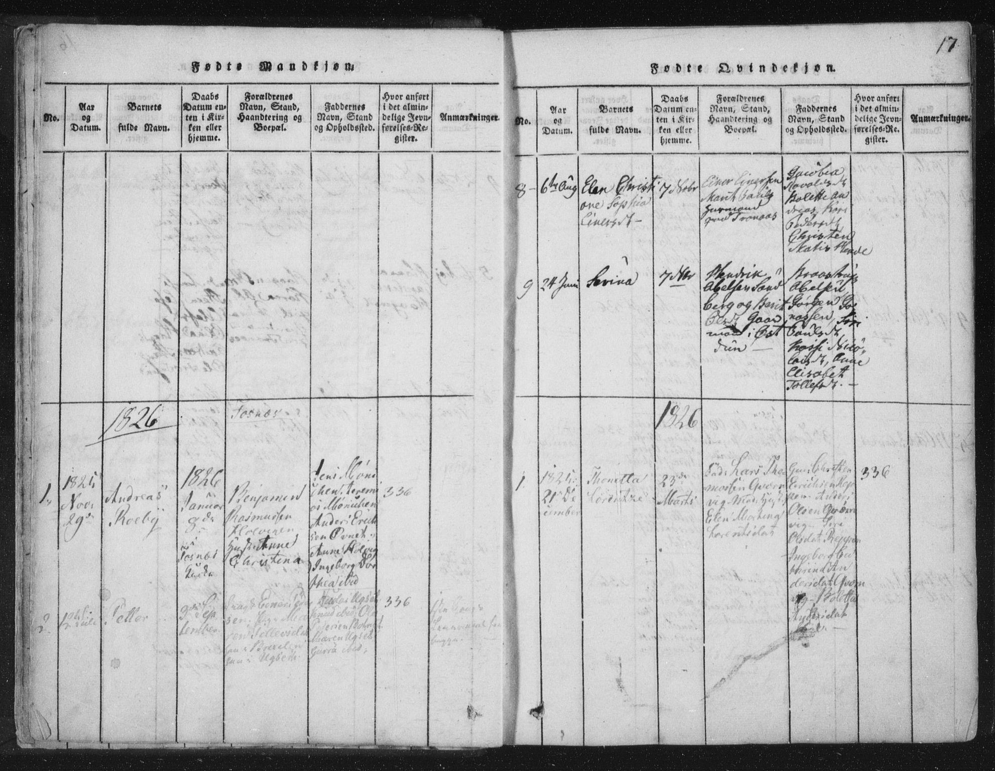 SAT, Ministerialprotokoller, klokkerbøker og fødselsregistre - Nord-Trøndelag, 773/L0609: Ministerialbok nr. 773A03 /1, 1815-1830, s. 17