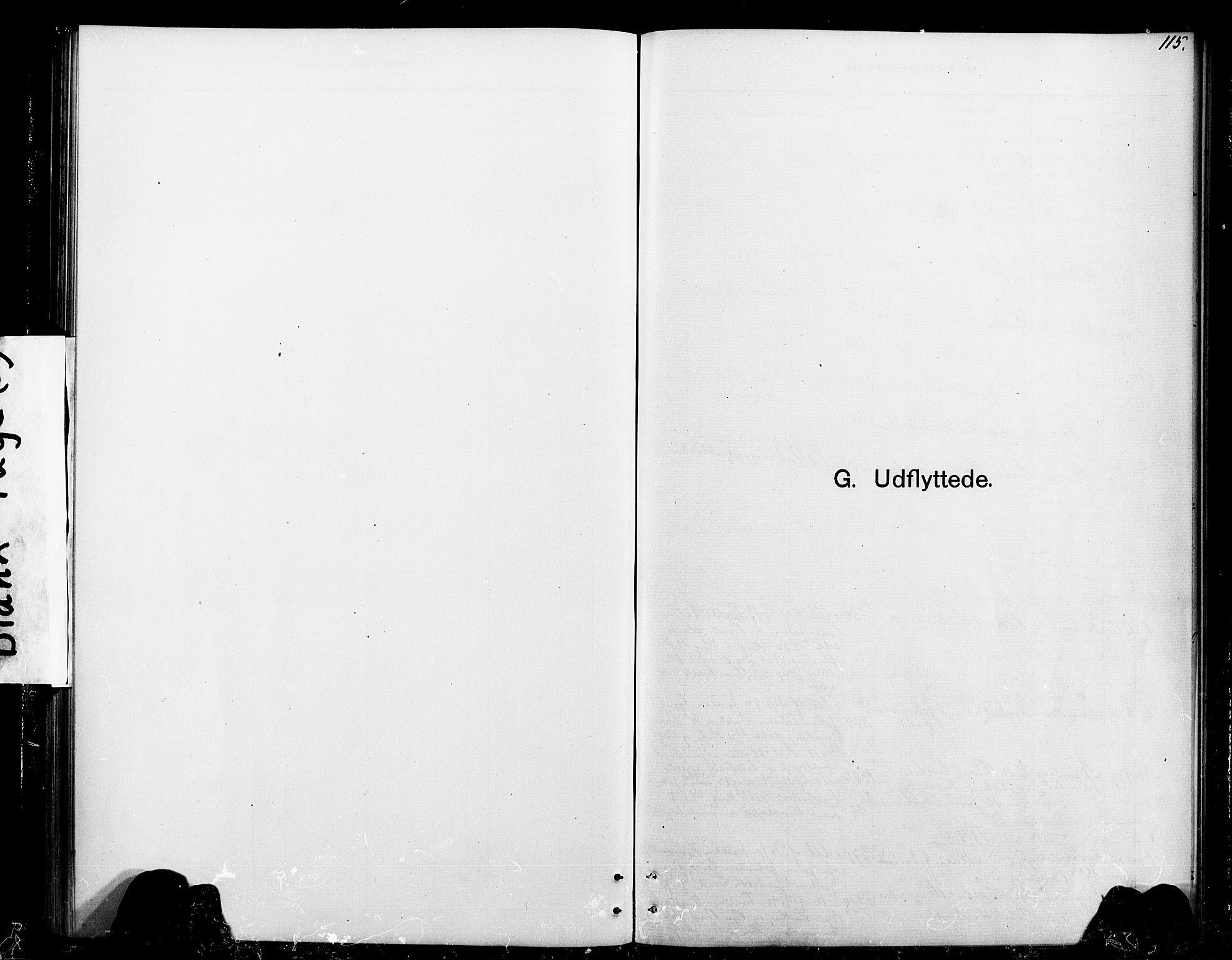 SAT, Ministerialprotokoller, klokkerbøker og fødselsregistre - Sør-Trøndelag, 693/L1123: Klokkerbok nr. 693C04, 1887-1910, s. 115