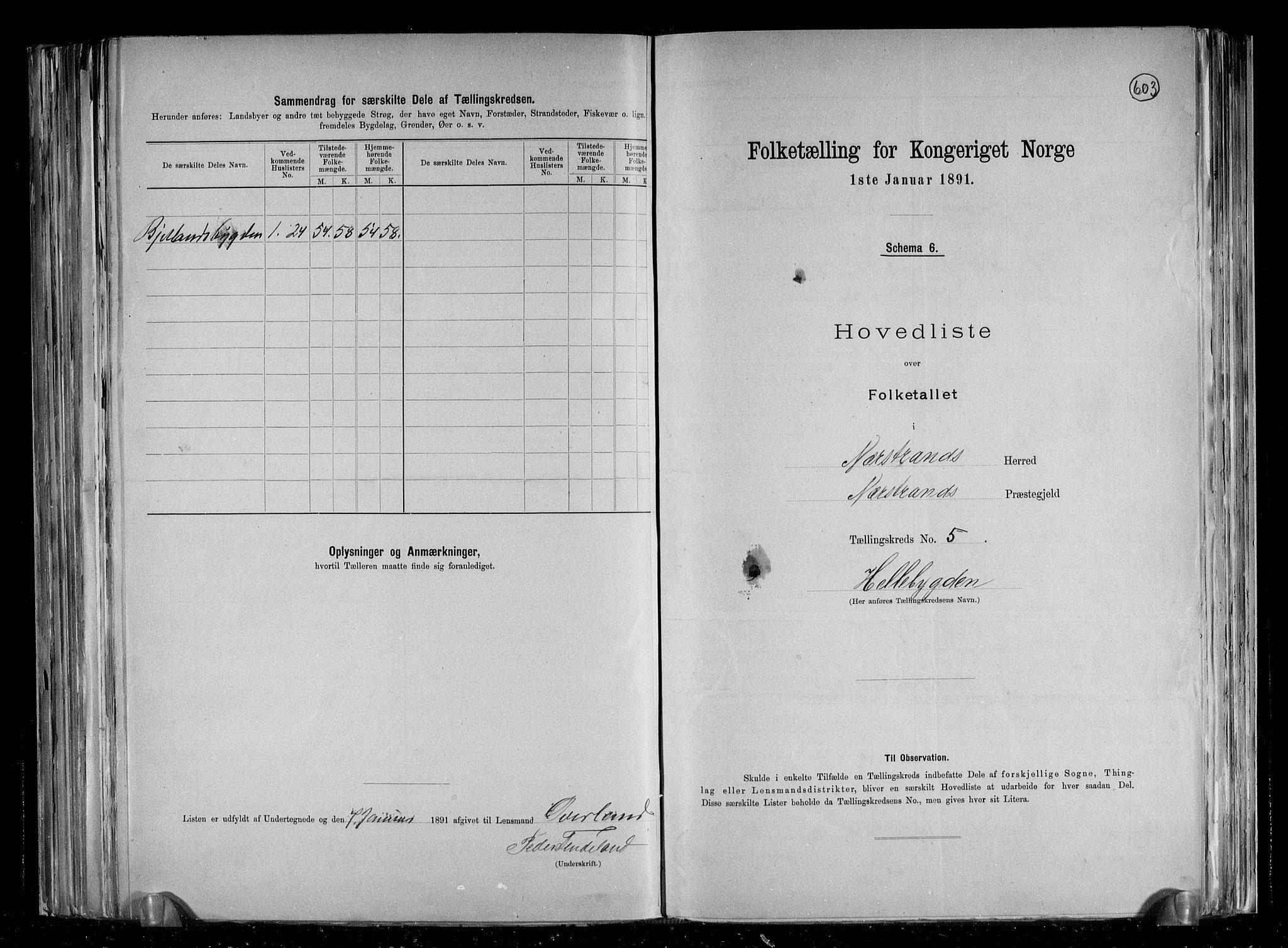 RA, Folketelling 1891 for 1139 Nedstrand herred, 1891, s. 13