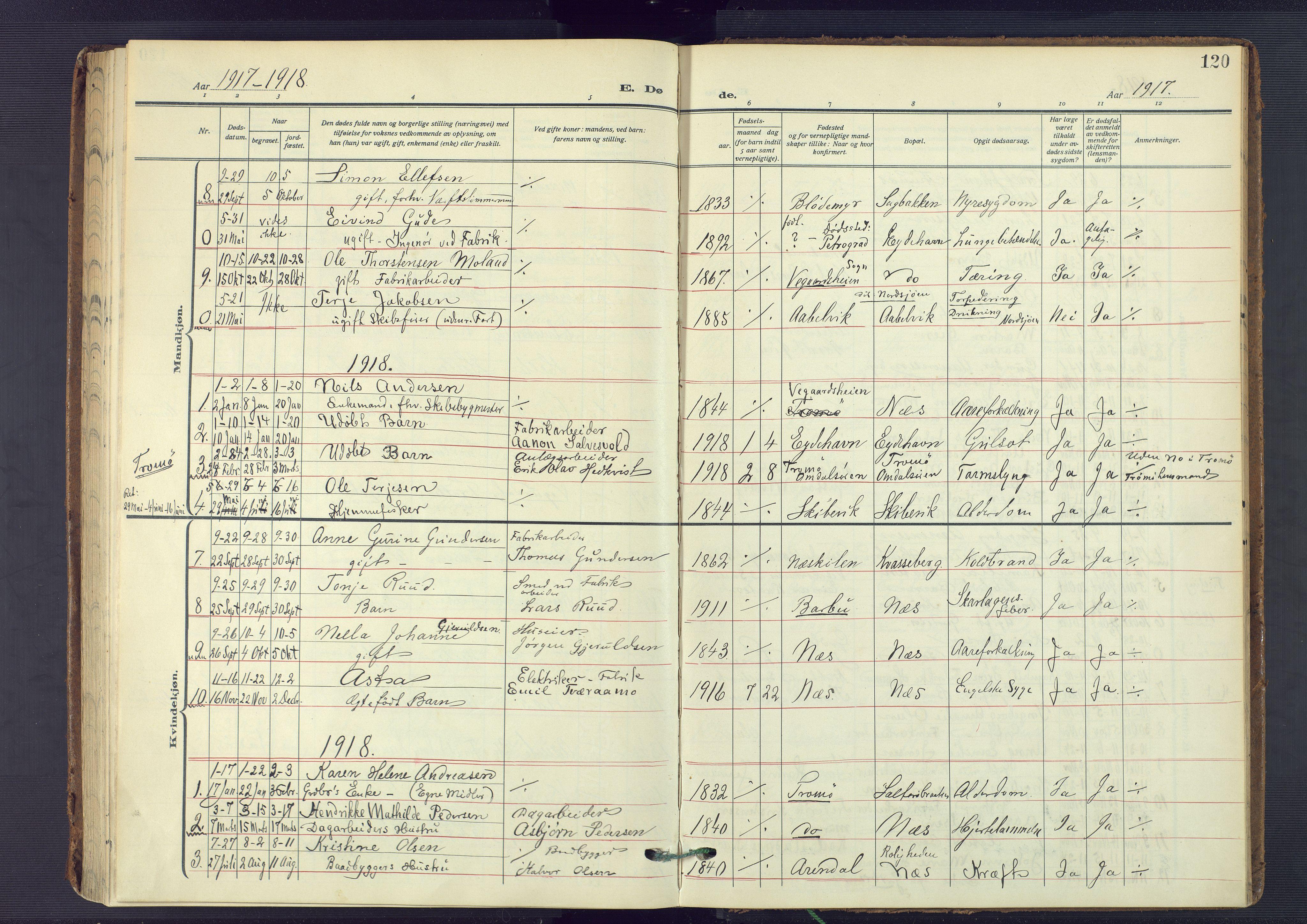 SAK, Austre Moland sokneprestkontor, F/Fa/Fab/L0003: Ministerialbok nr. A 3, 1914-1927, s. 120