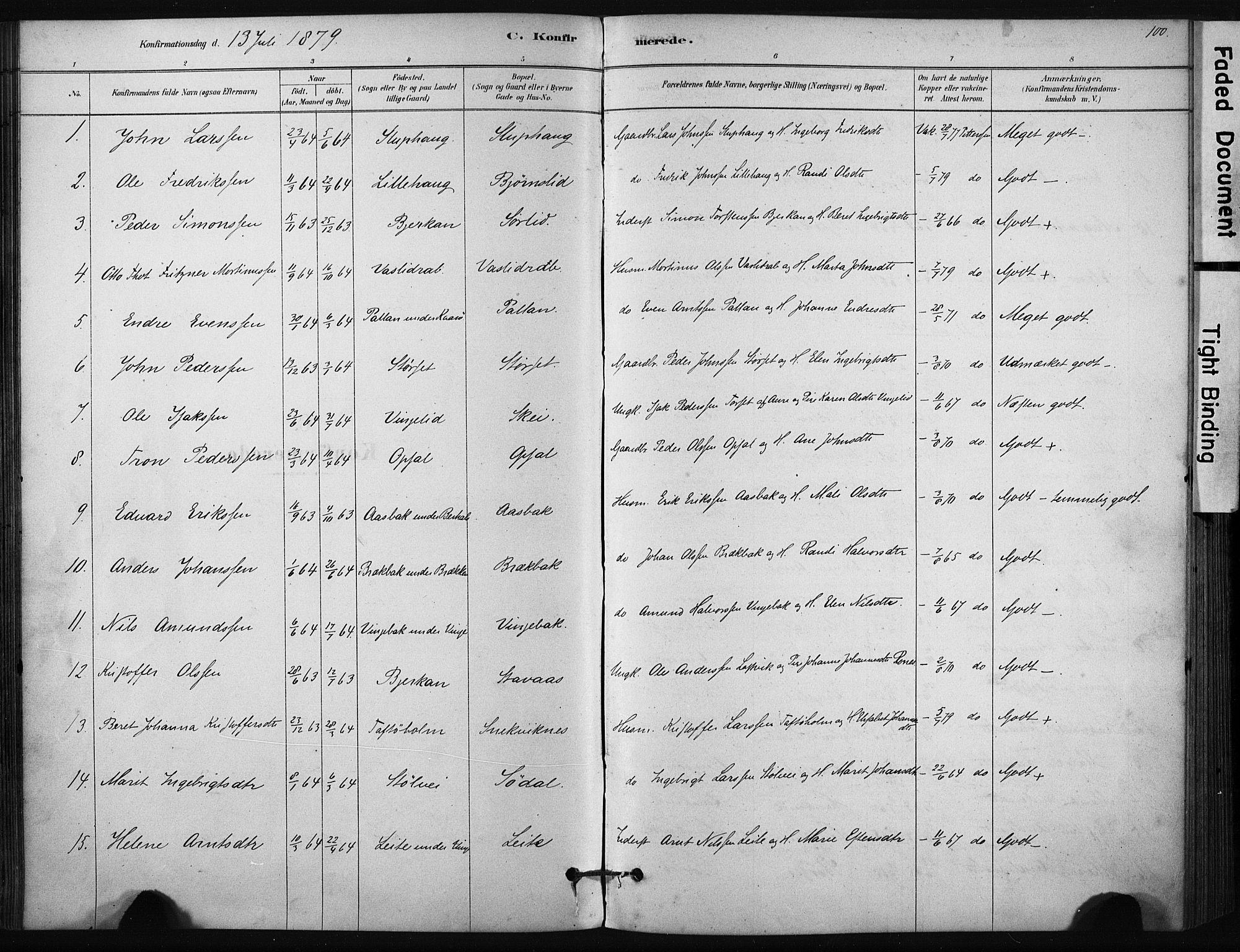 SAT, Ministerialprotokoller, klokkerbøker og fødselsregistre - Sør-Trøndelag, 631/L0512: Ministerialbok nr. 631A01, 1879-1912, s. 100