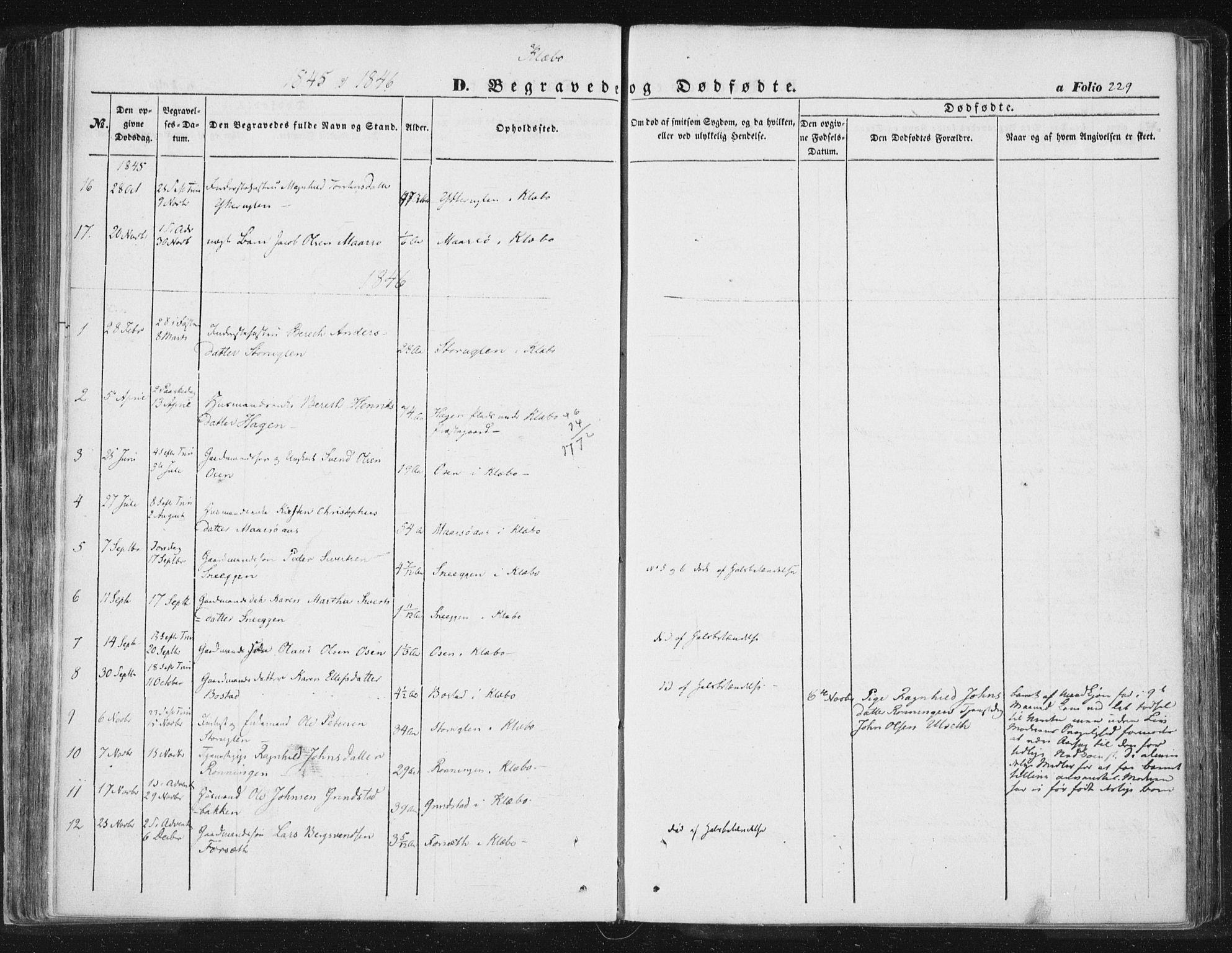 SAT, Ministerialprotokoller, klokkerbøker og fødselsregistre - Sør-Trøndelag, 618/L0441: Ministerialbok nr. 618A05, 1843-1862, s. 229
