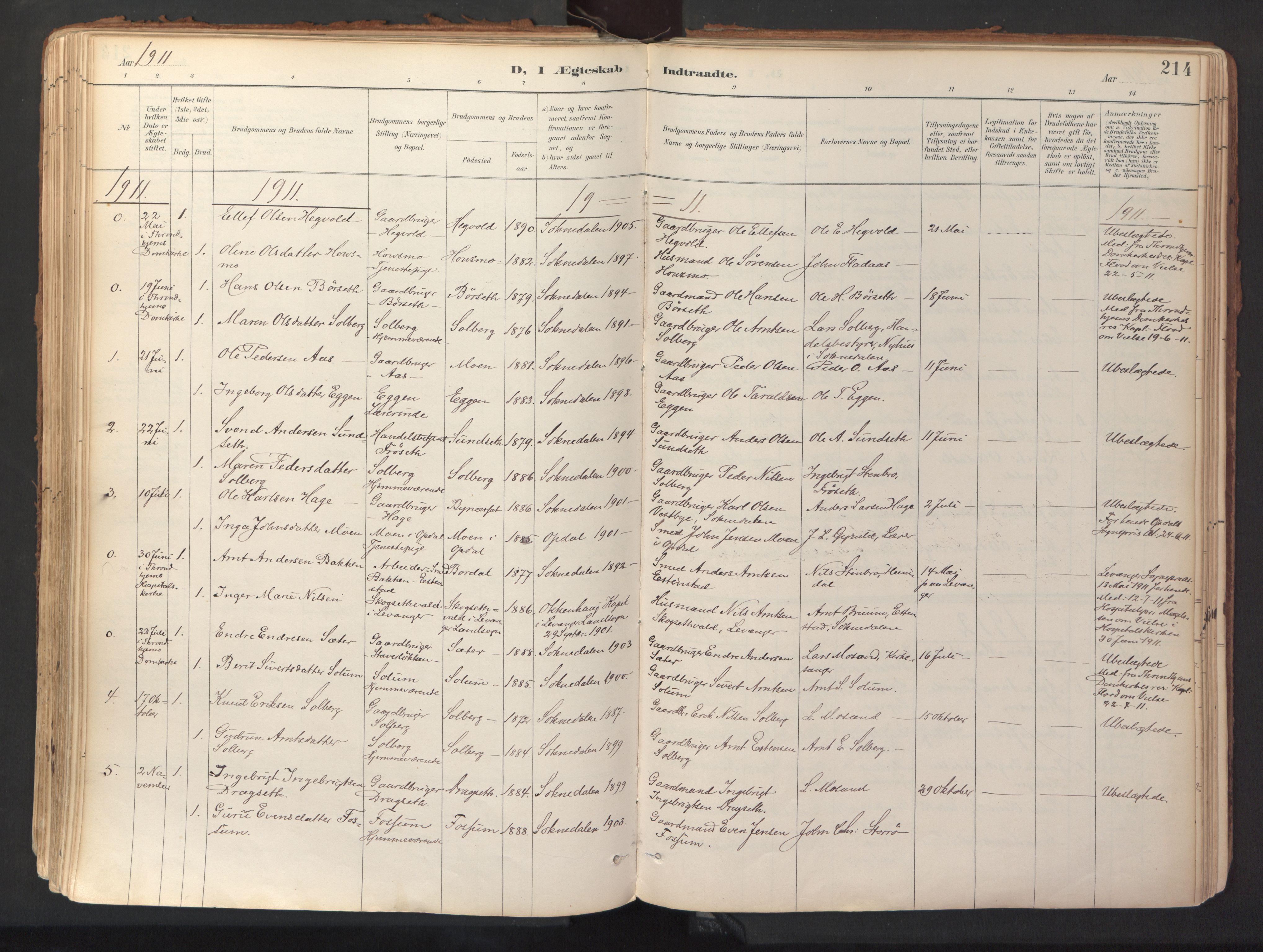 SAT, Ministerialprotokoller, klokkerbøker og fødselsregistre - Sør-Trøndelag, 689/L1041: Ministerialbok nr. 689A06, 1891-1923, s. 214