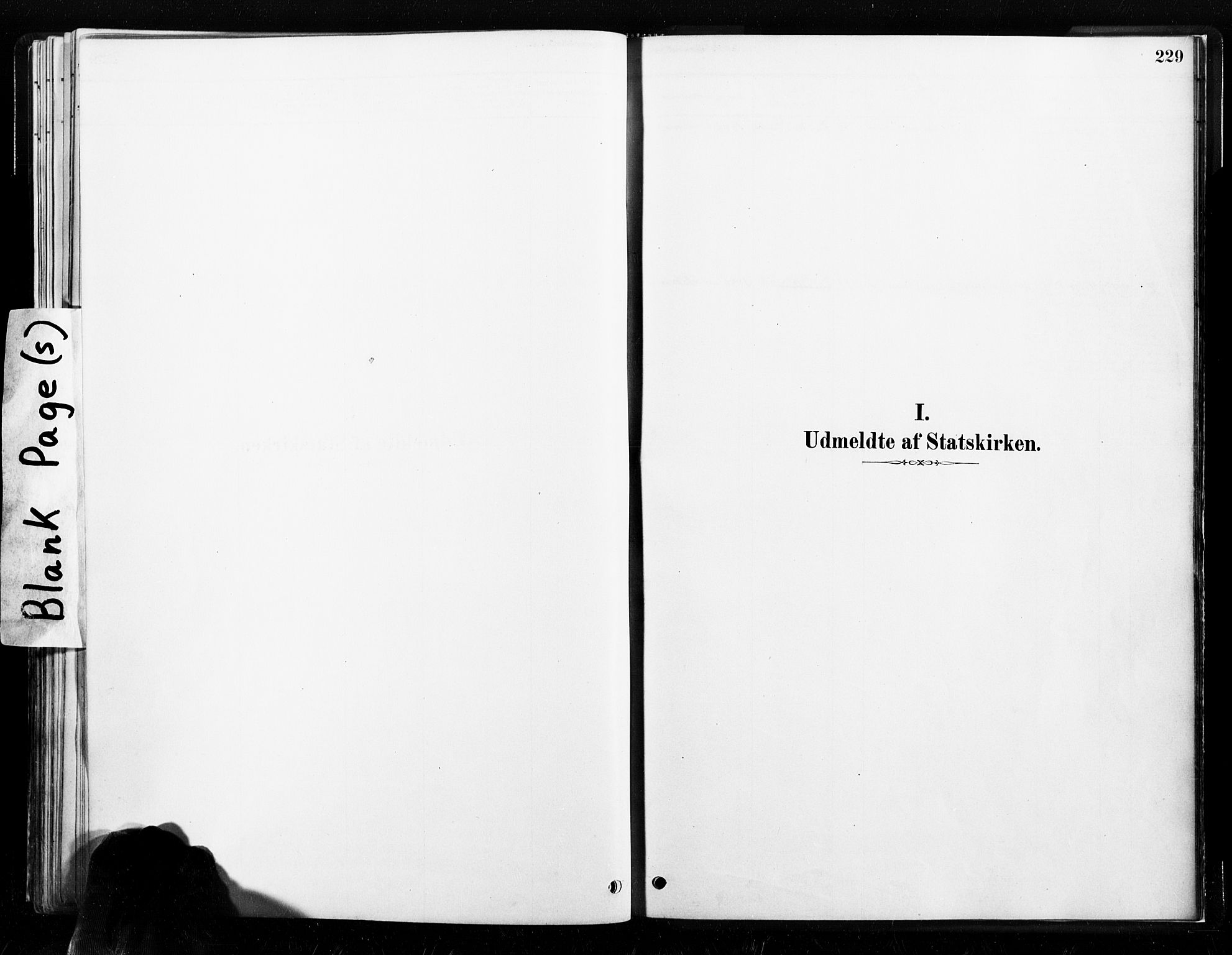 SAT, Ministerialprotokoller, klokkerbøker og fødselsregistre - Nord-Trøndelag, 789/L0705: Ministerialbok nr. 789A01, 1878-1910, s. 229
