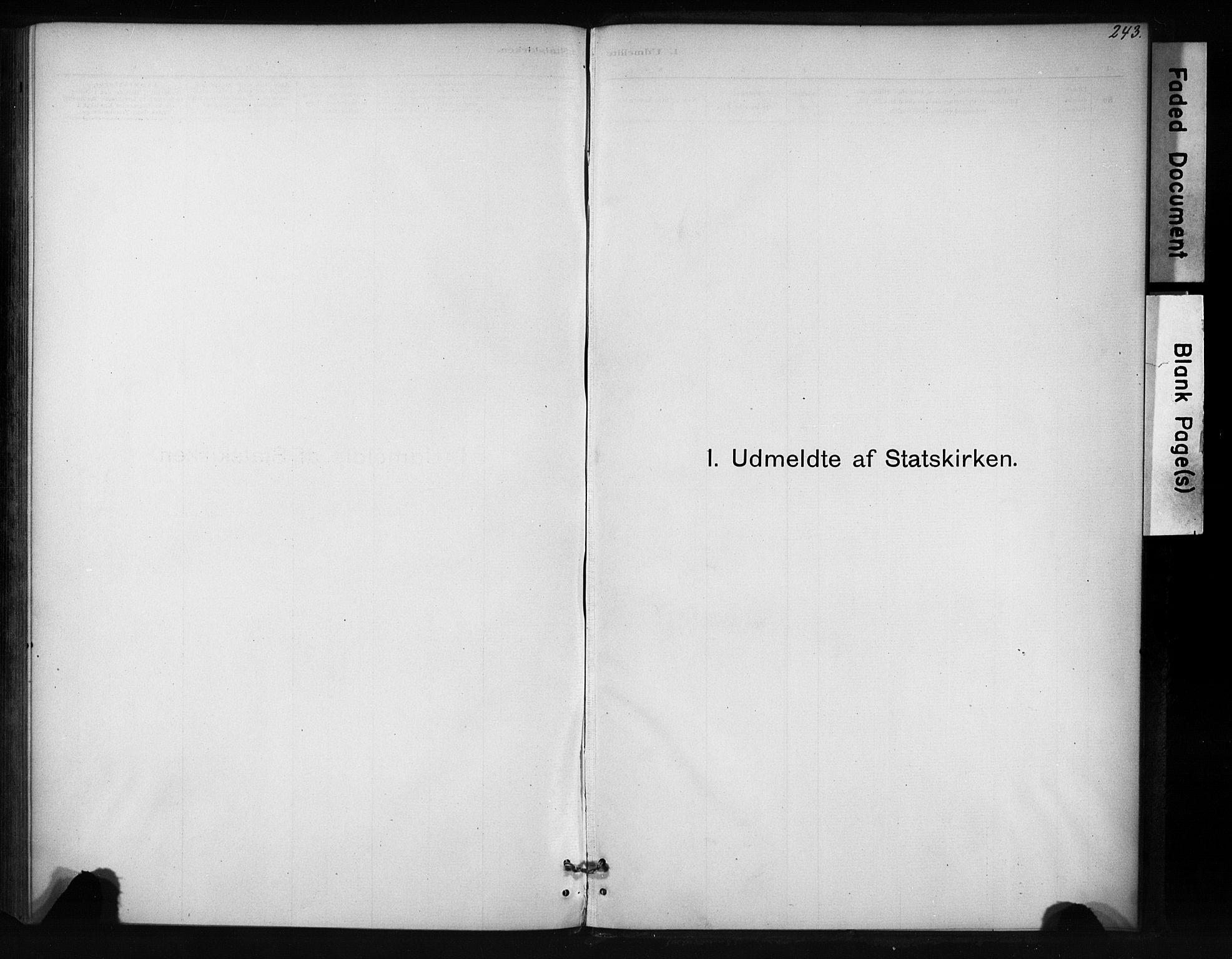 SAT, Ministerialprotokoller, klokkerbøker og fødselsregistre - Sør-Trøndelag, 694/L1127: Ministerialbok nr. 694A01, 1887-1905, s. 243