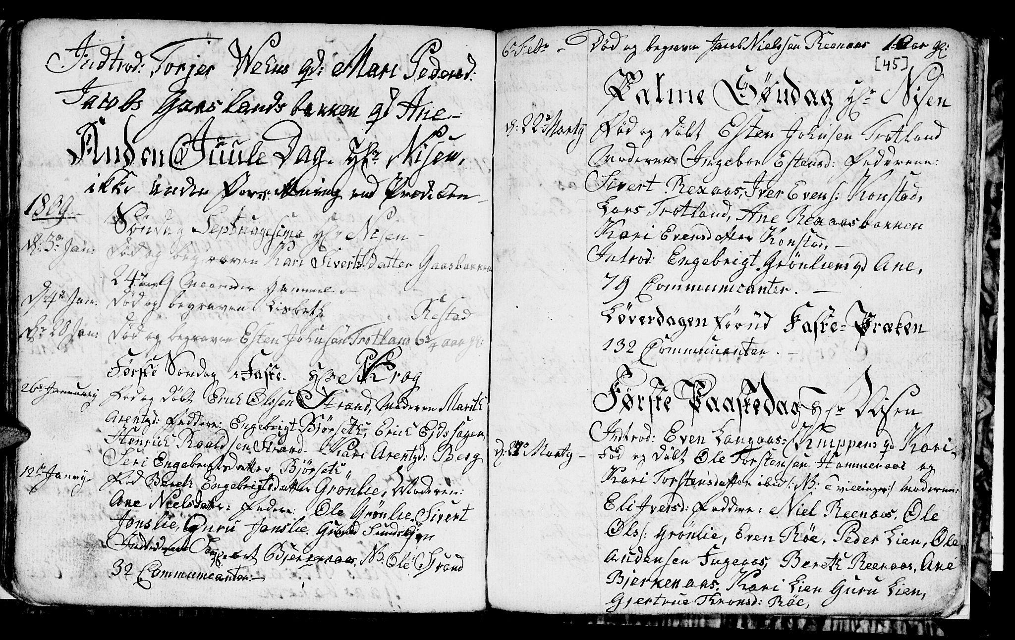 SAT, Ministerialprotokoller, klokkerbøker og fødselsregistre - Sør-Trøndelag, 694/L1129: Klokkerbok nr. 694C01, 1793-1815, s. 45