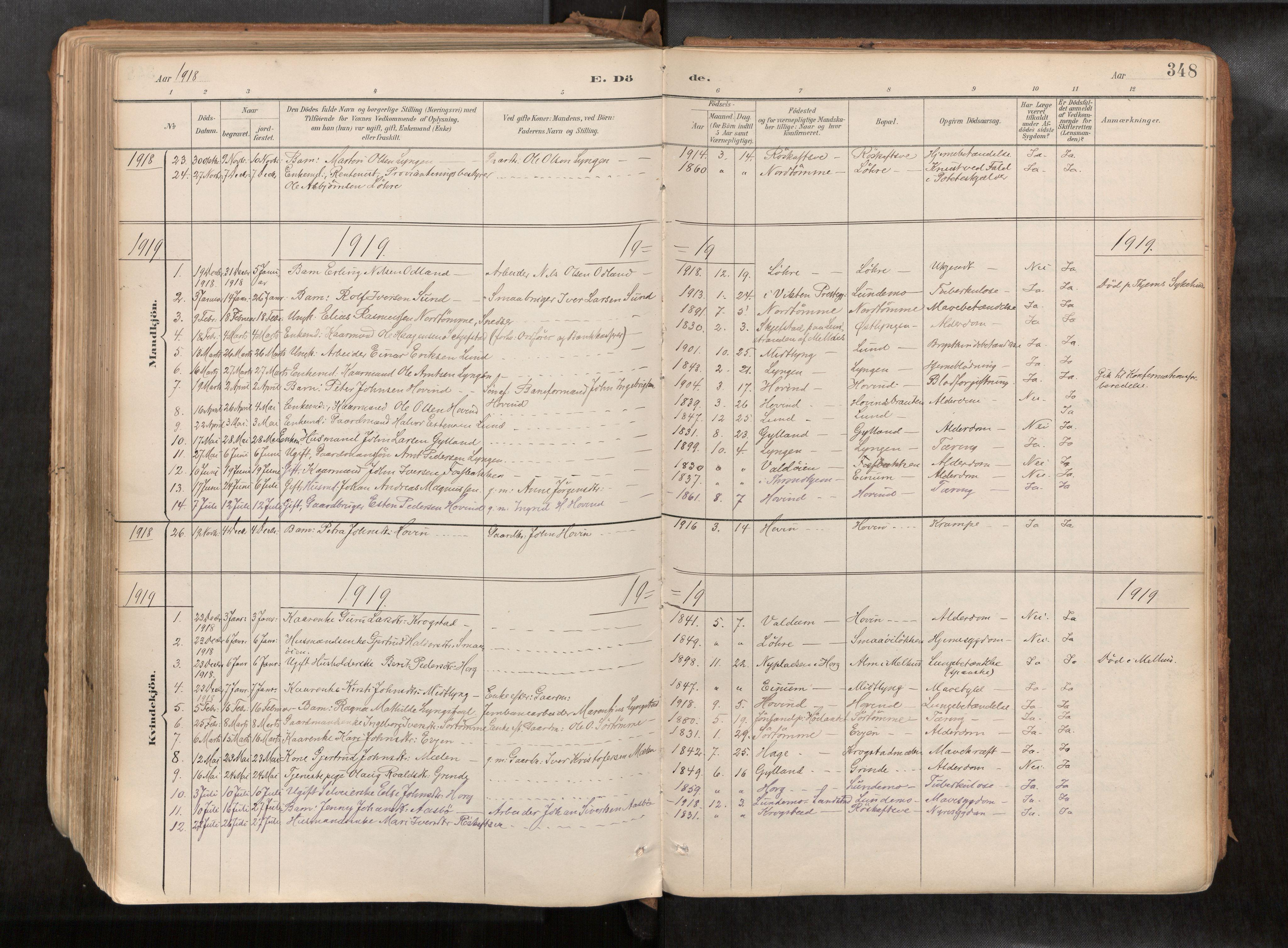 SAT, Ministerialprotokoller, klokkerbøker og fødselsregistre - Sør-Trøndelag, 692/L1105b: Ministerialbok nr. 692A06, 1891-1934, s. 348