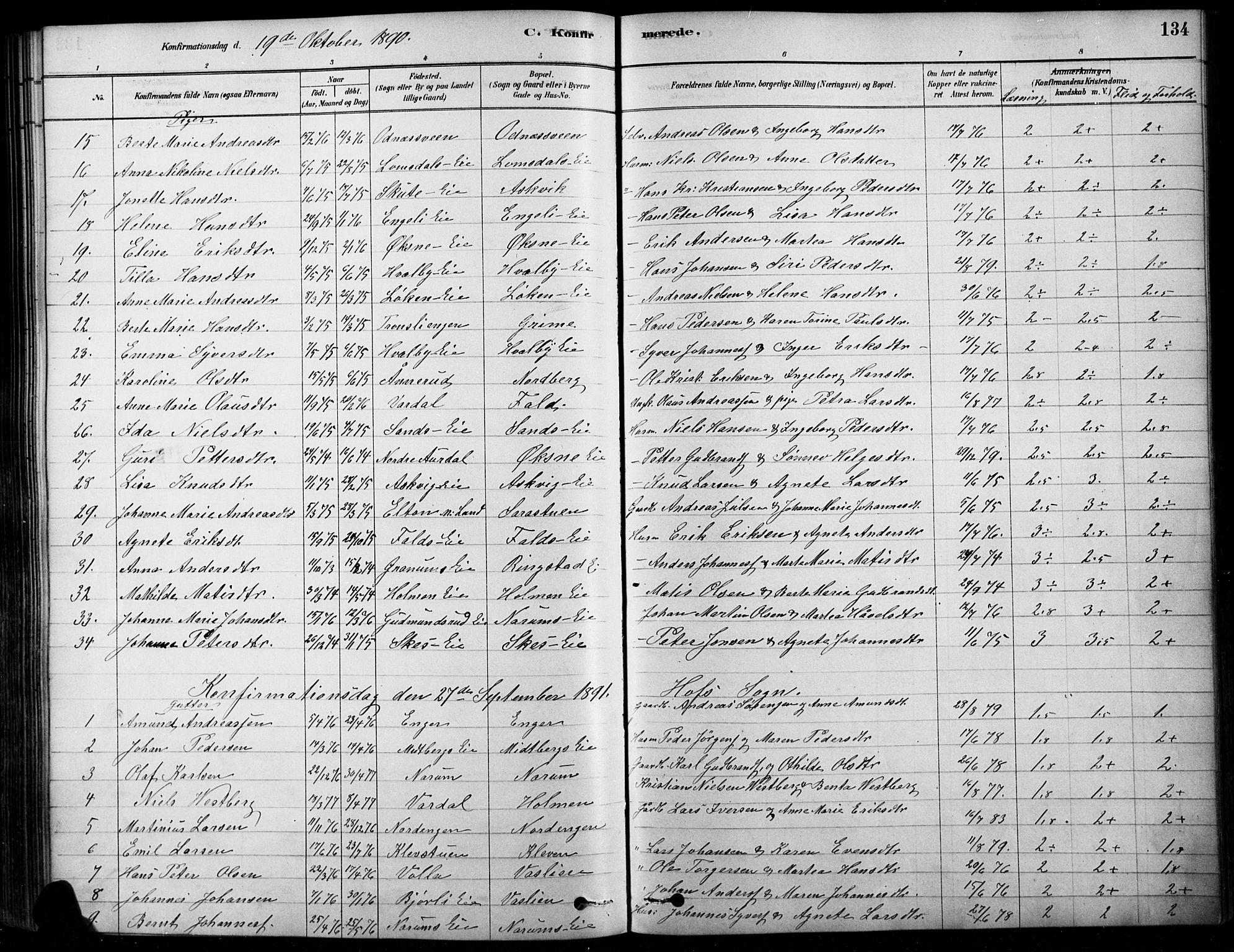 SAH, Søndre Land prestekontor, K/L0003: Ministerialbok nr. 3, 1878-1894, s. 134