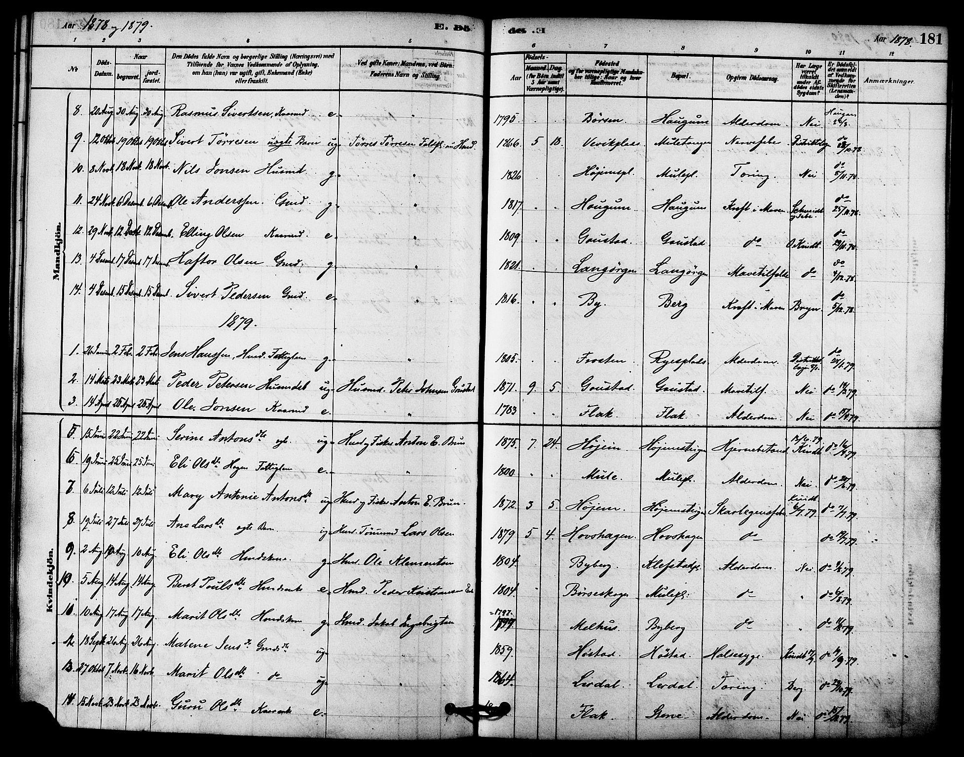 SAT, Ministerialprotokoller, klokkerbøker og fødselsregistre - Sør-Trøndelag, 612/L0378: Ministerialbok nr. 612A10, 1878-1897, s. 181