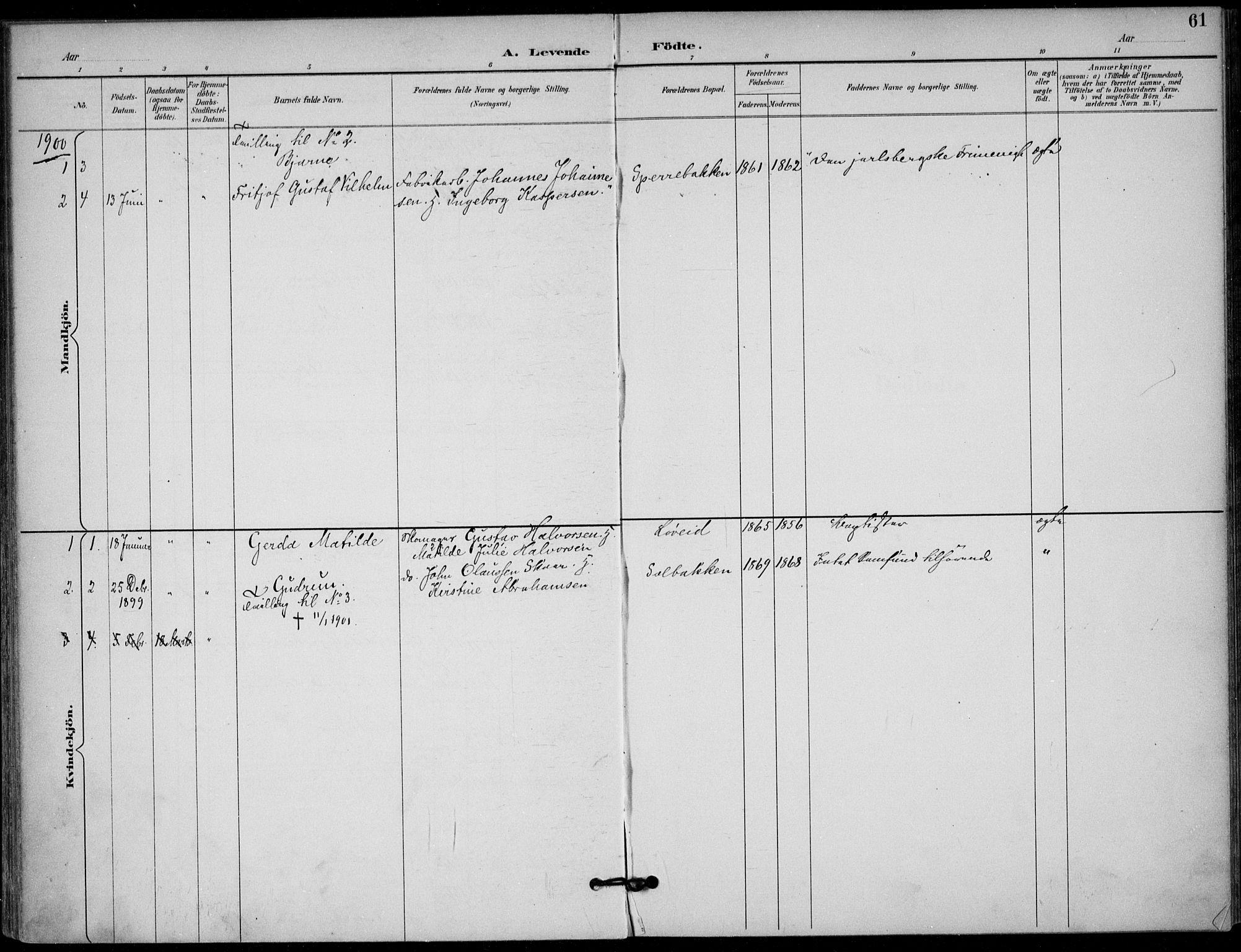 SAKO, Solum kirkebøker, F/Fb/L0002: Ministerialbok nr. II 2, 1893-1901, s. 61