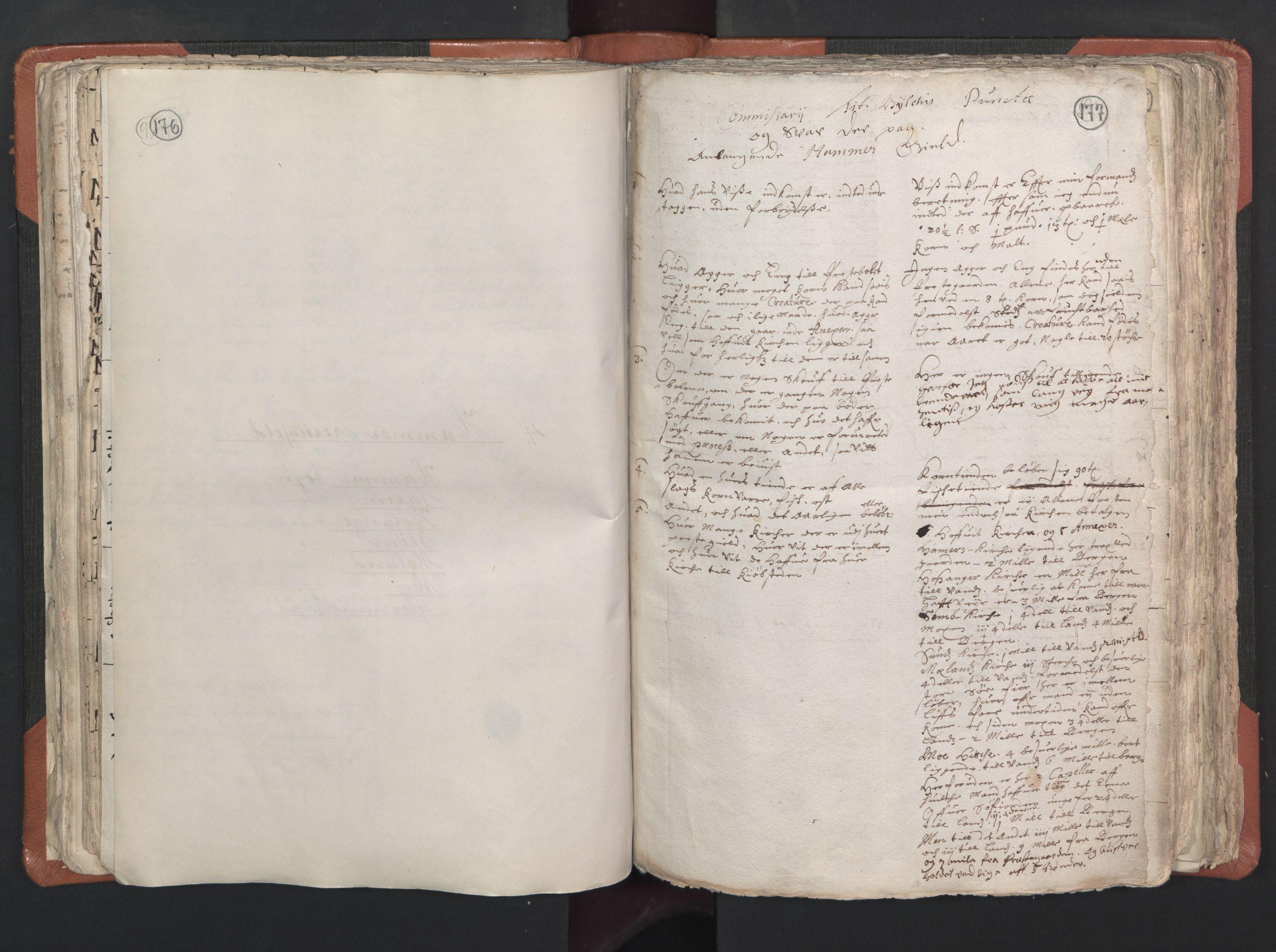 RA, Sogneprestenes manntall 1664-1666, nr. 22: Nordhordland prosti, 1664-1666, s. 176-177
