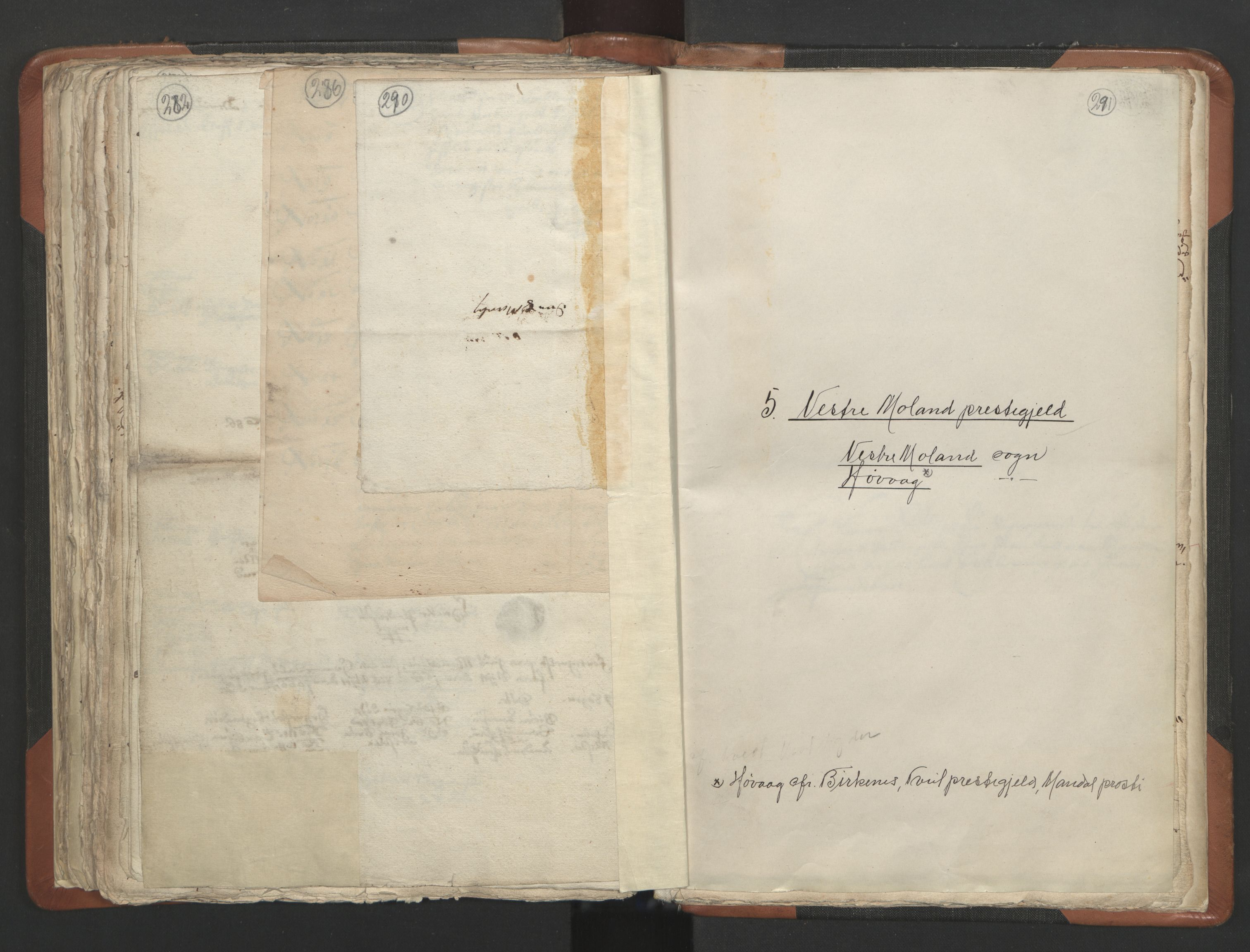 RA, Sogneprestenes manntall 1664-1666, nr. 13: Nedenes prosti, 1664-1666, s. 290-291