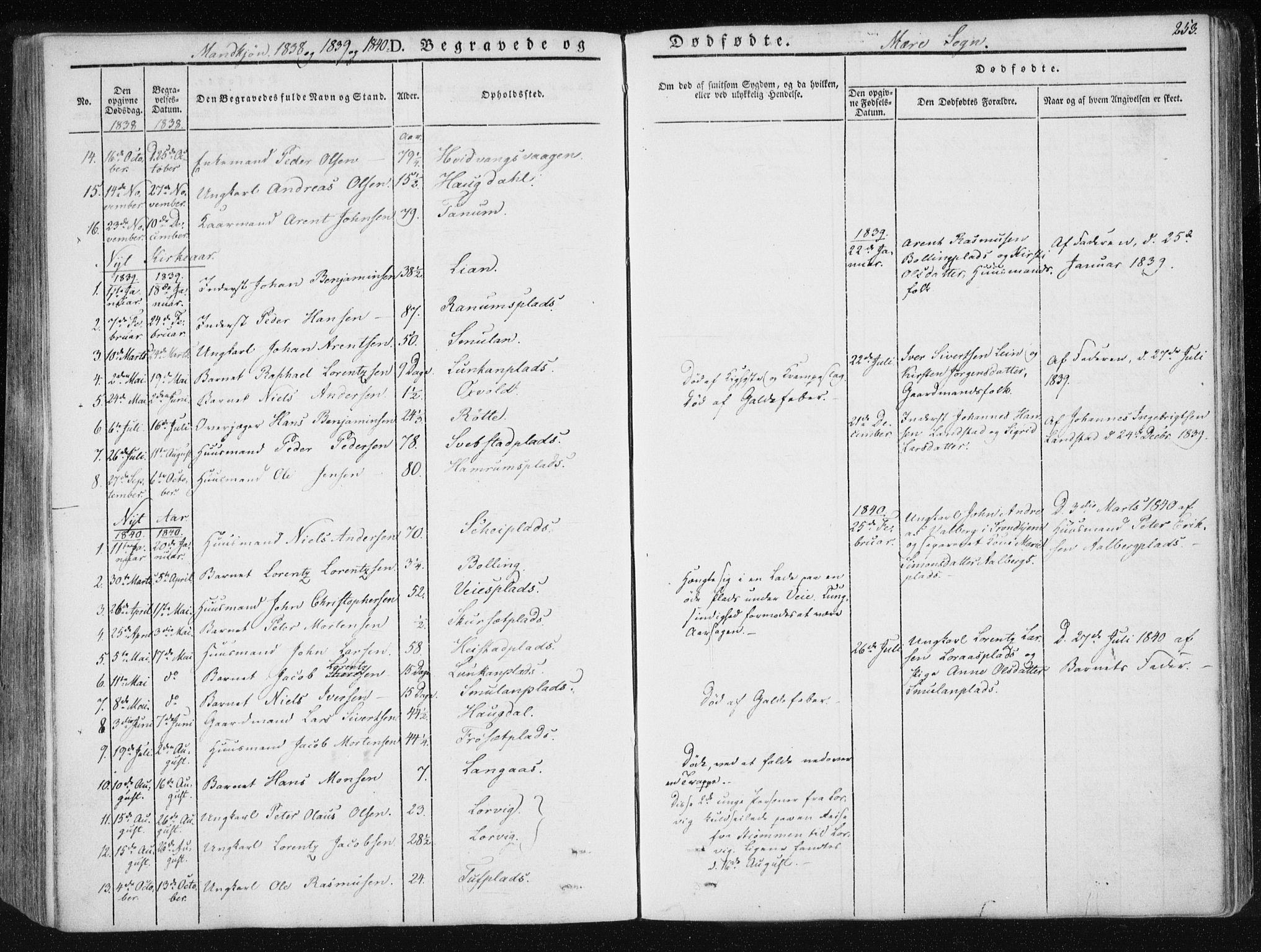 SAT, Ministerialprotokoller, klokkerbøker og fødselsregistre - Nord-Trøndelag, 735/L0339: Ministerialbok nr. 735A06 /1, 1836-1848, s. 253