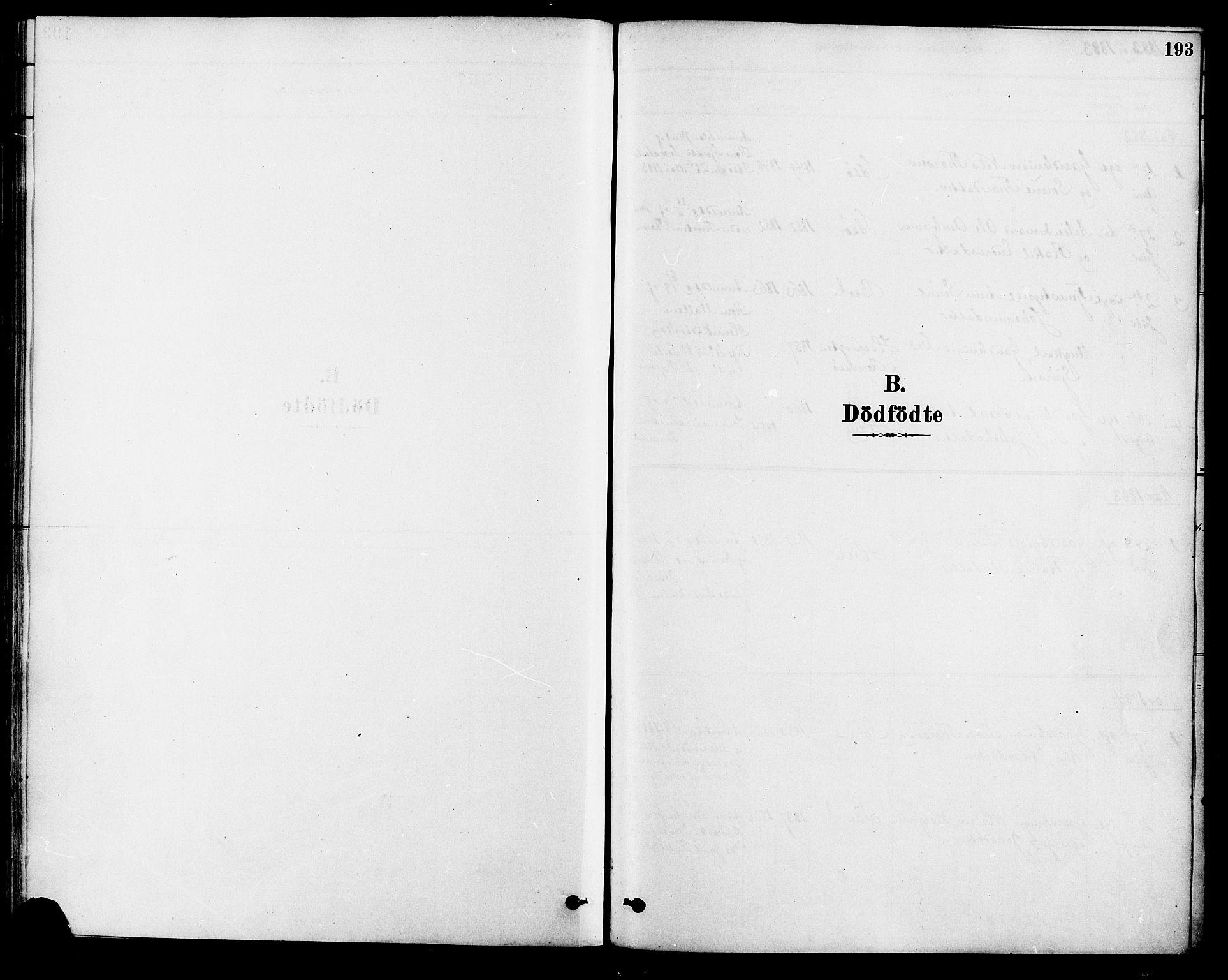 SAST, Strand sokneprestkontor, H/Ha/Haa/L0009: Ministerialbok nr. A 9, 1877-1908, s. 193