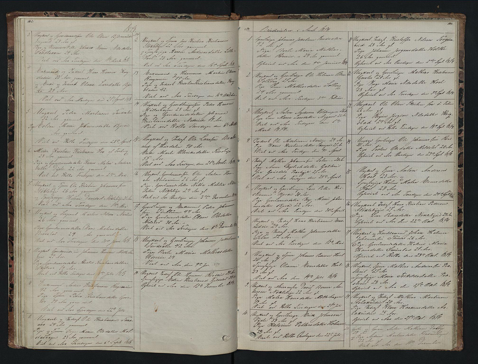 SAH, Vestre Toten prestekontor, H/Ha/Hab/L0007: Klokkerbok nr. 7, 1872-1900, s. 102-103