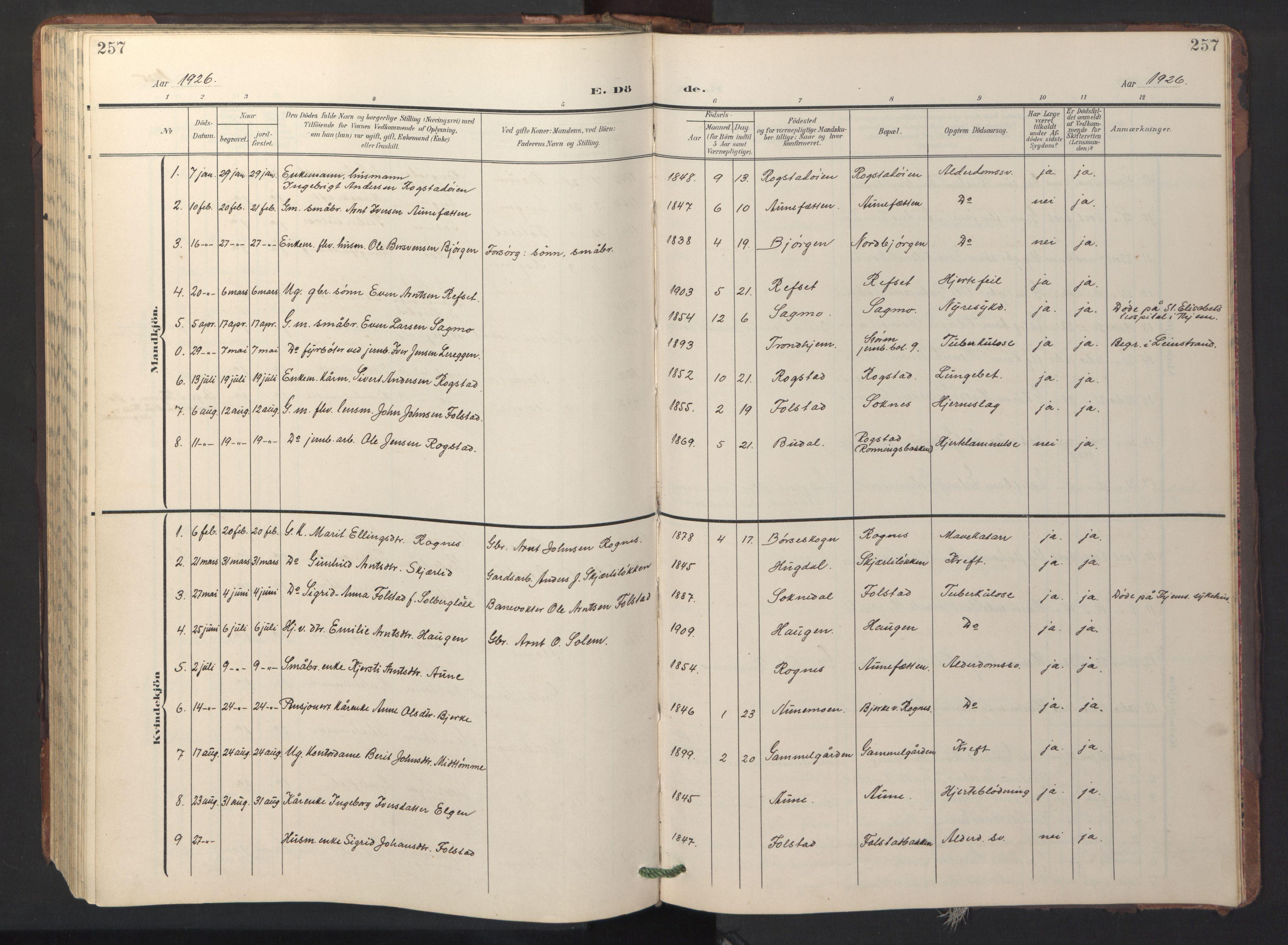 SAT, Ministerialprotokoller, klokkerbøker og fødselsregistre - Sør-Trøndelag, 687/L1019: Klokkerbok nr. 687C03, 1904-1931, s. 257