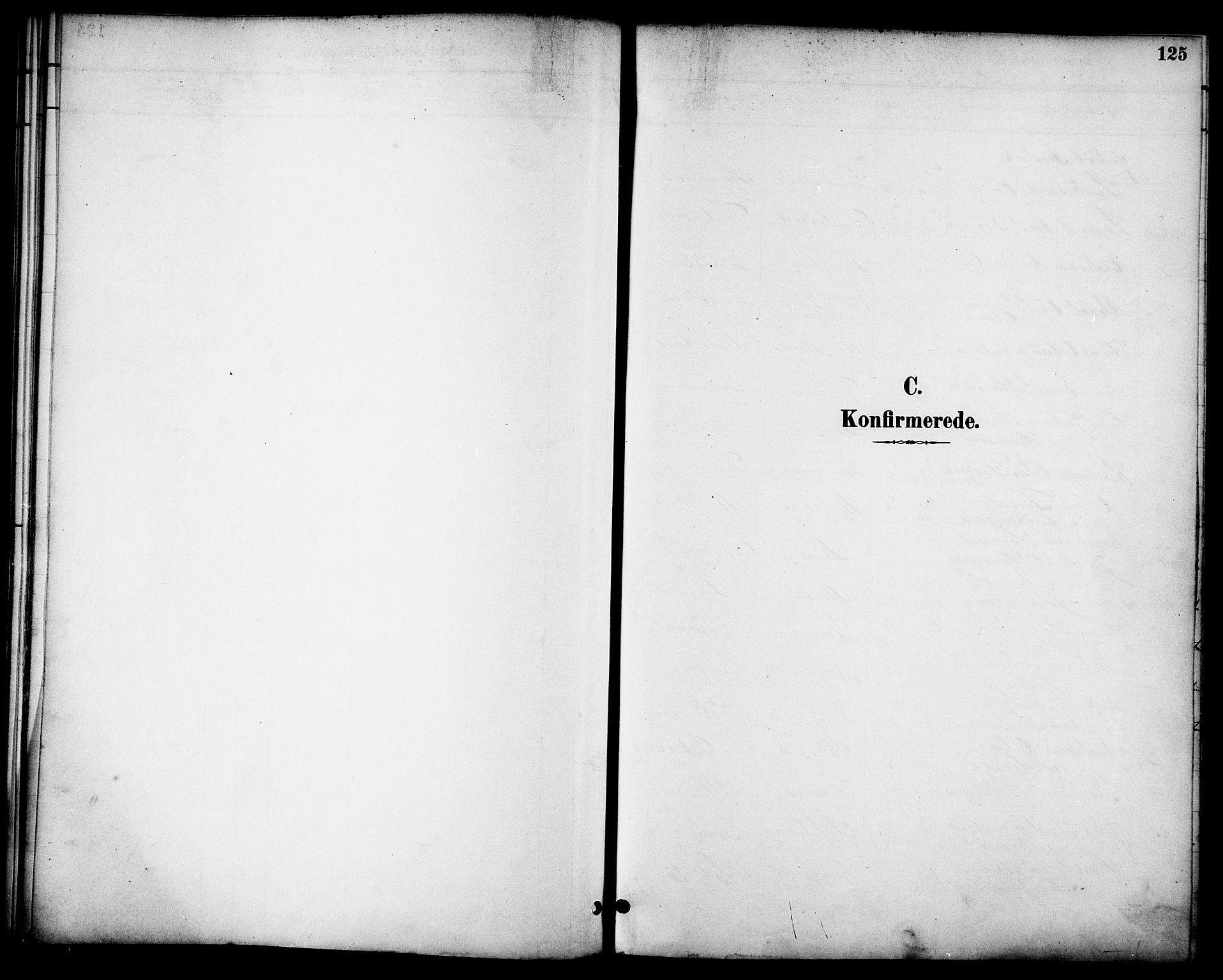 SAT, Ministerialprotokoller, klokkerbøker og fødselsregistre - Nordland, 863/L0898: Ministerialbok nr. 863A10, 1886-1897, s. 125