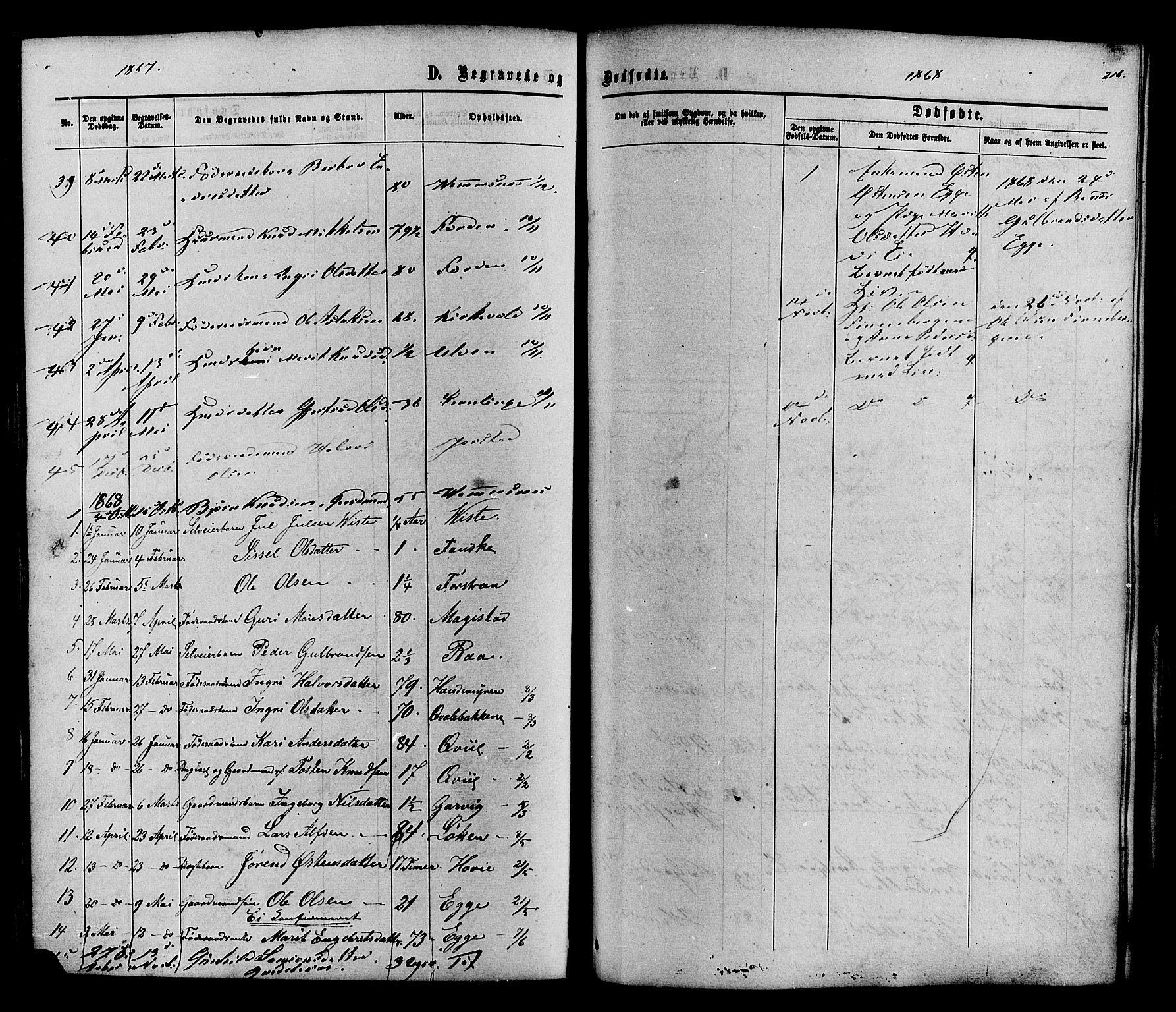 SAH, Vestre Slidre prestekontor, Ministerialbok nr. 3, 1865-1880, s. 216