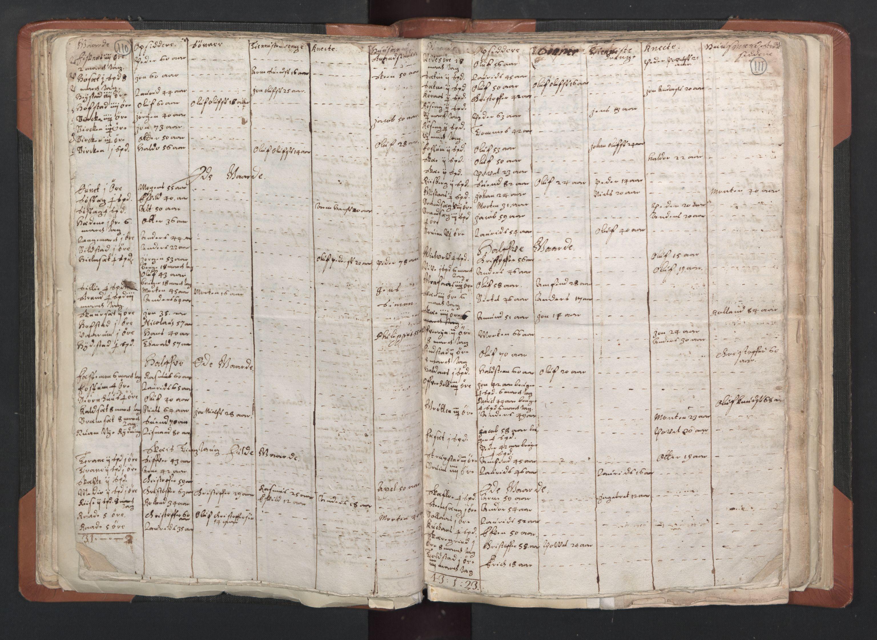 RA, Sogneprestenes manntall 1664-1666, nr. 33: Innherad prosti, 1664-1666, s. 110-111