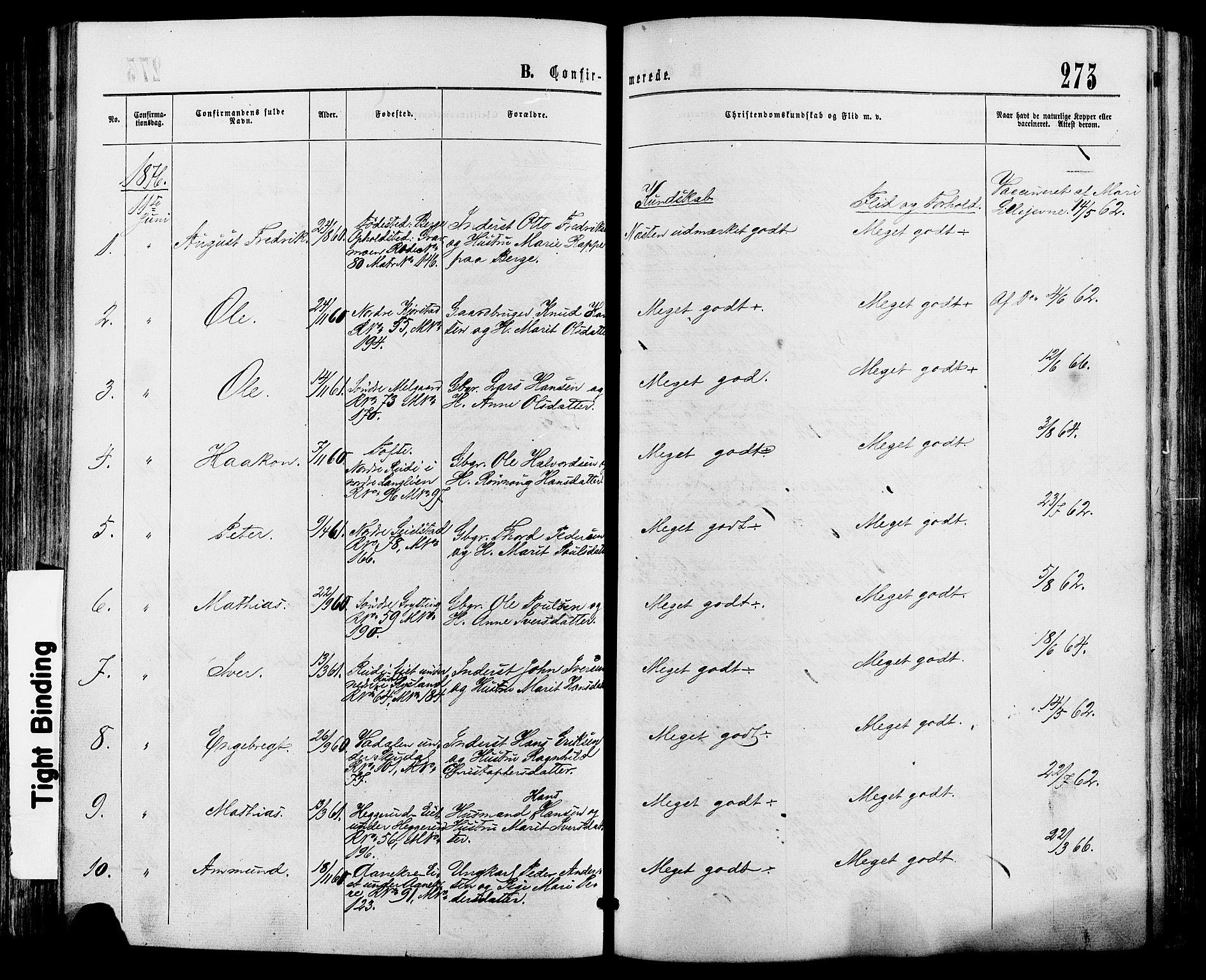 SAH, Sør-Fron prestekontor, H/Ha/Haa/L0002: Ministerialbok nr. 2, 1864-1880, s. 273