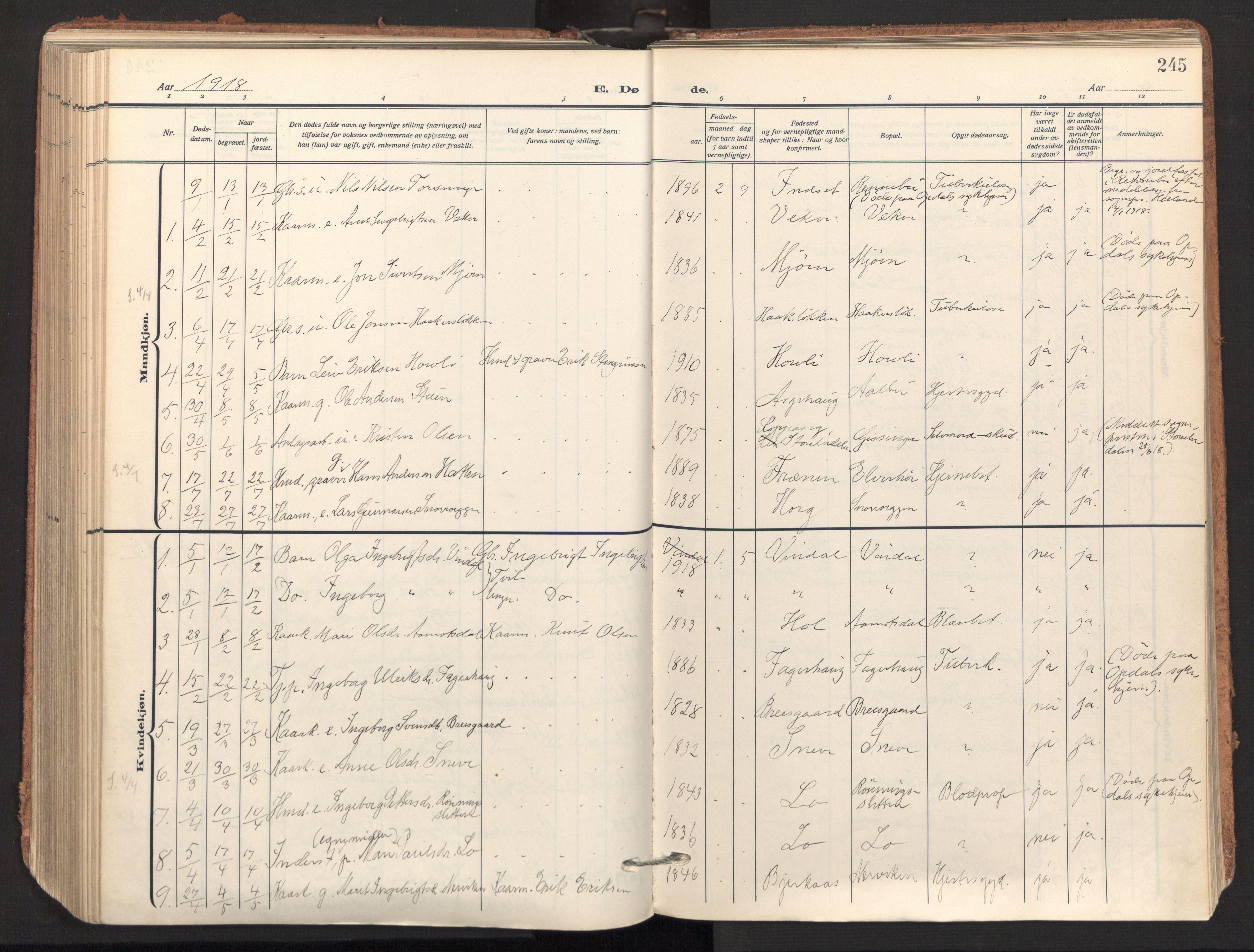 SAT, Ministerialprotokoller, klokkerbøker og fødselsregistre - Sør-Trøndelag, 678/L0909: Ministerialbok nr. 678A17, 1912-1930, s. 245