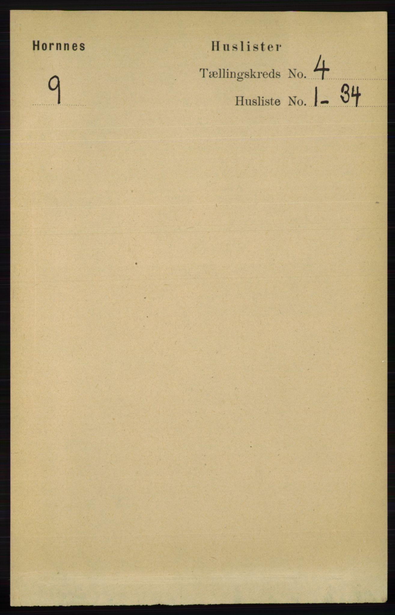 RA, Folketelling 1891 for 0936 Hornnes herred, 1891, s. 1011