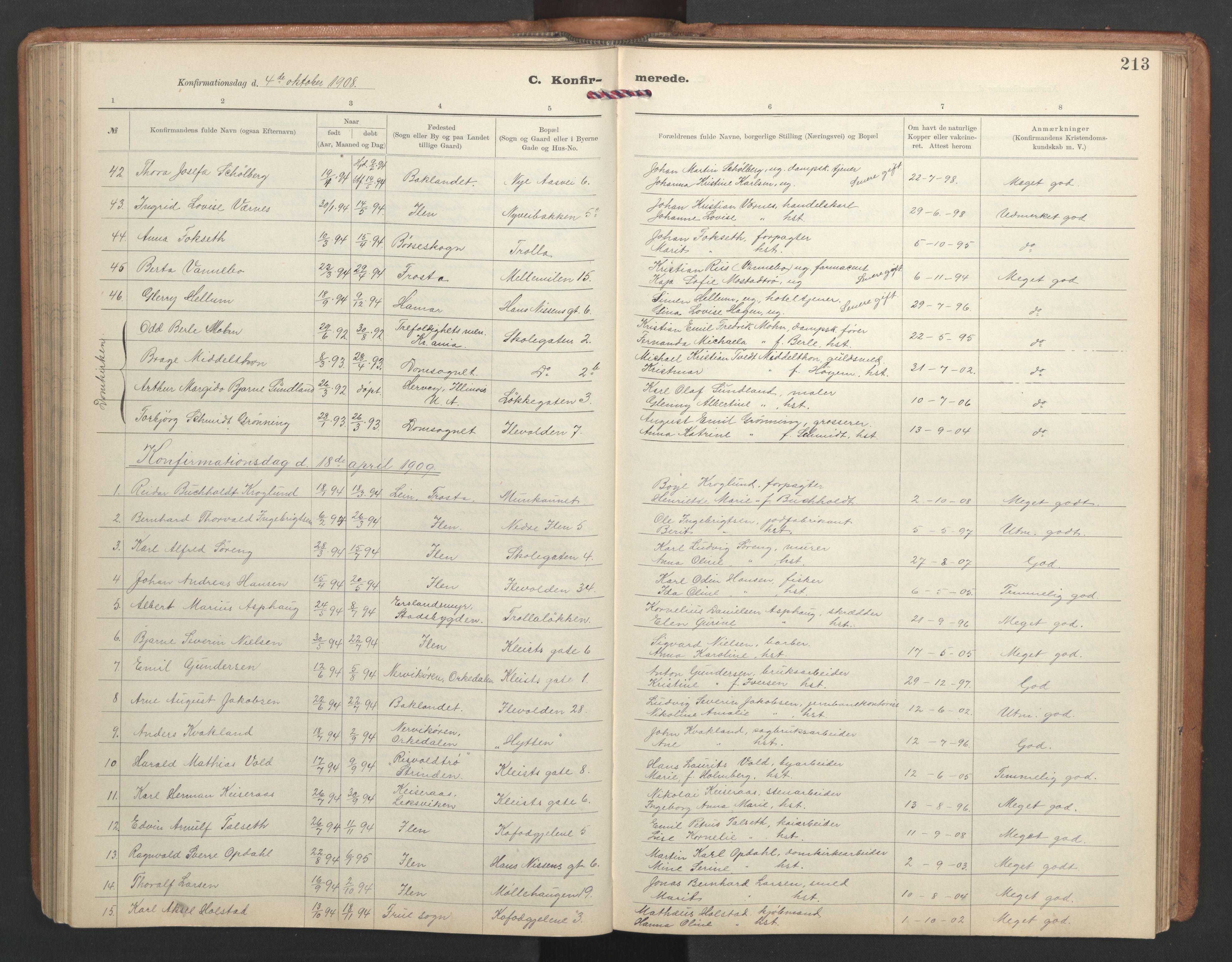 SAT, Ministerialprotokoller, klokkerbøker og fødselsregistre - Sør-Trøndelag, 603/L0173: Klokkerbok nr. 603C01, 1907-1962, s. 213