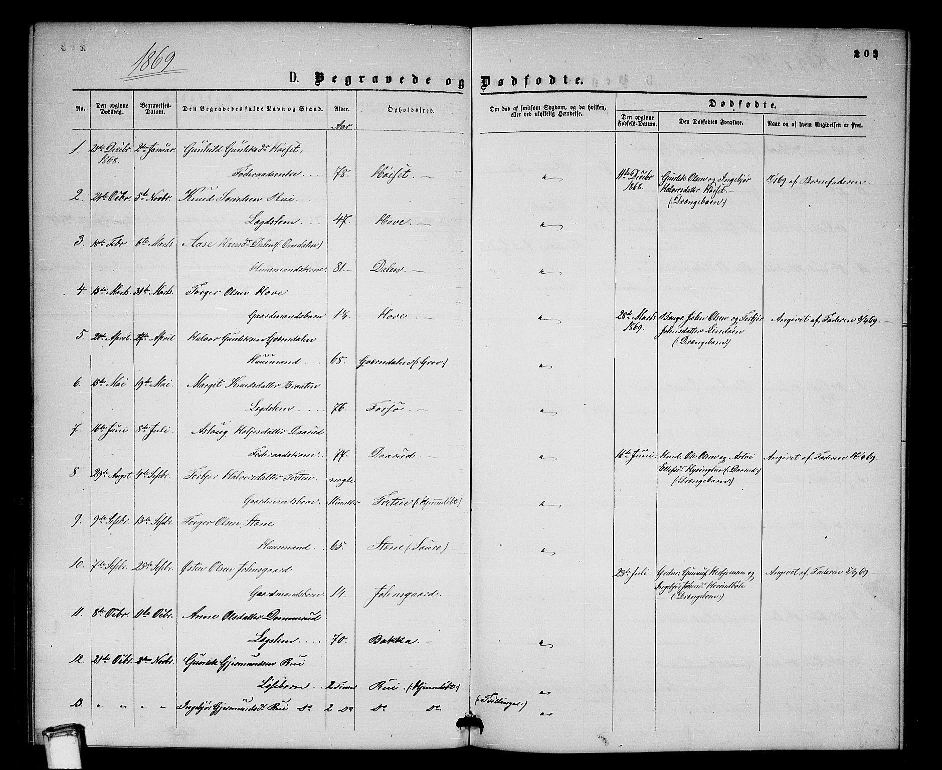 SAKO, Gransherad kirkebøker, G/Gb/L0002: Klokkerbok nr. II 2, 1860-1886, s. 203