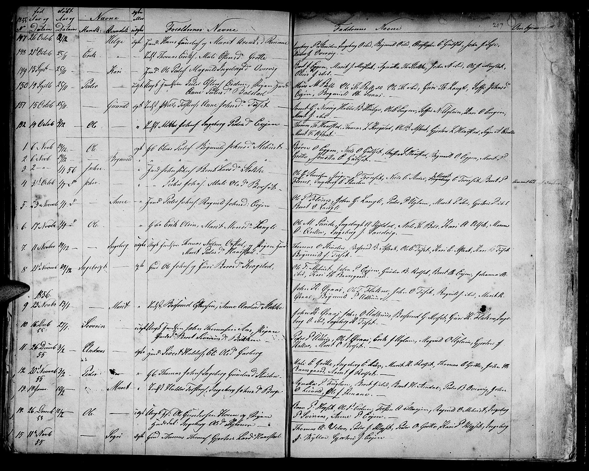SAT, Ministerialprotokoller, klokkerbøker og fødselsregistre - Sør-Trøndelag, 695/L1154: Klokkerbok nr. 695C05, 1842-1858, s. 207