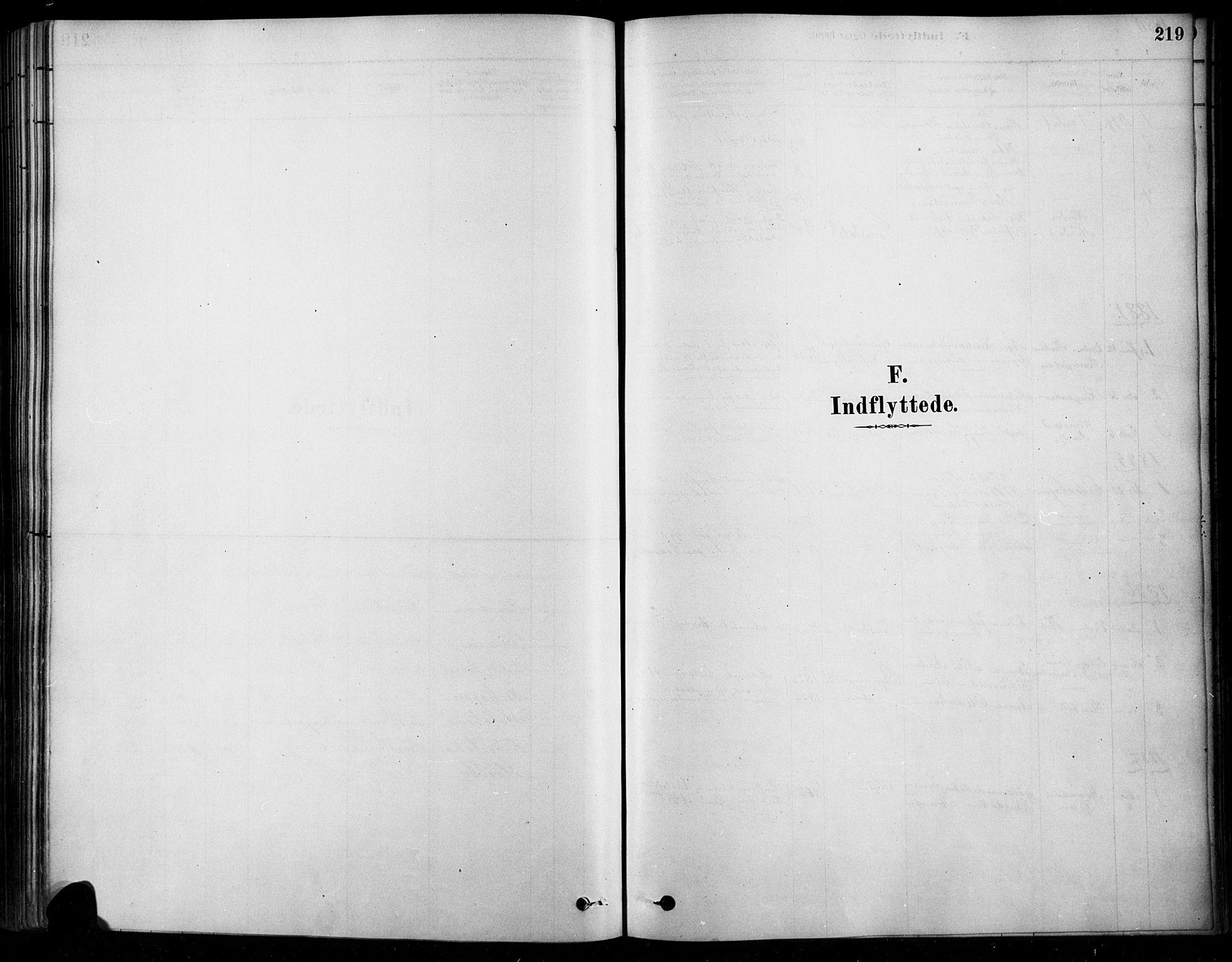 SAH, Søndre Land prestekontor, K/L0003: Ministerialbok nr. 3, 1878-1894, s. 219