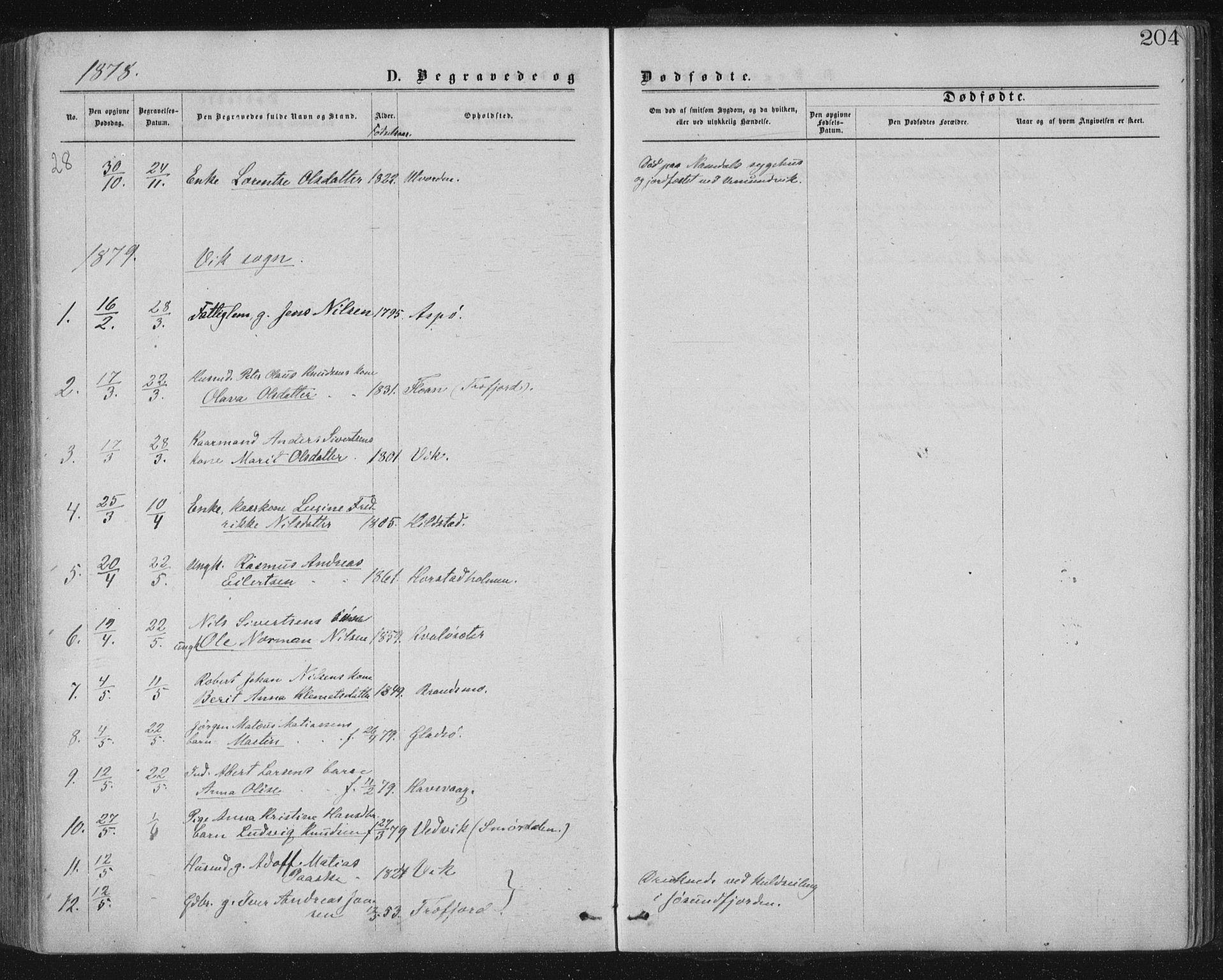 SAT, Ministerialprotokoller, klokkerbøker og fødselsregistre - Nord-Trøndelag, 771/L0596: Ministerialbok nr. 771A03, 1870-1884, s. 204