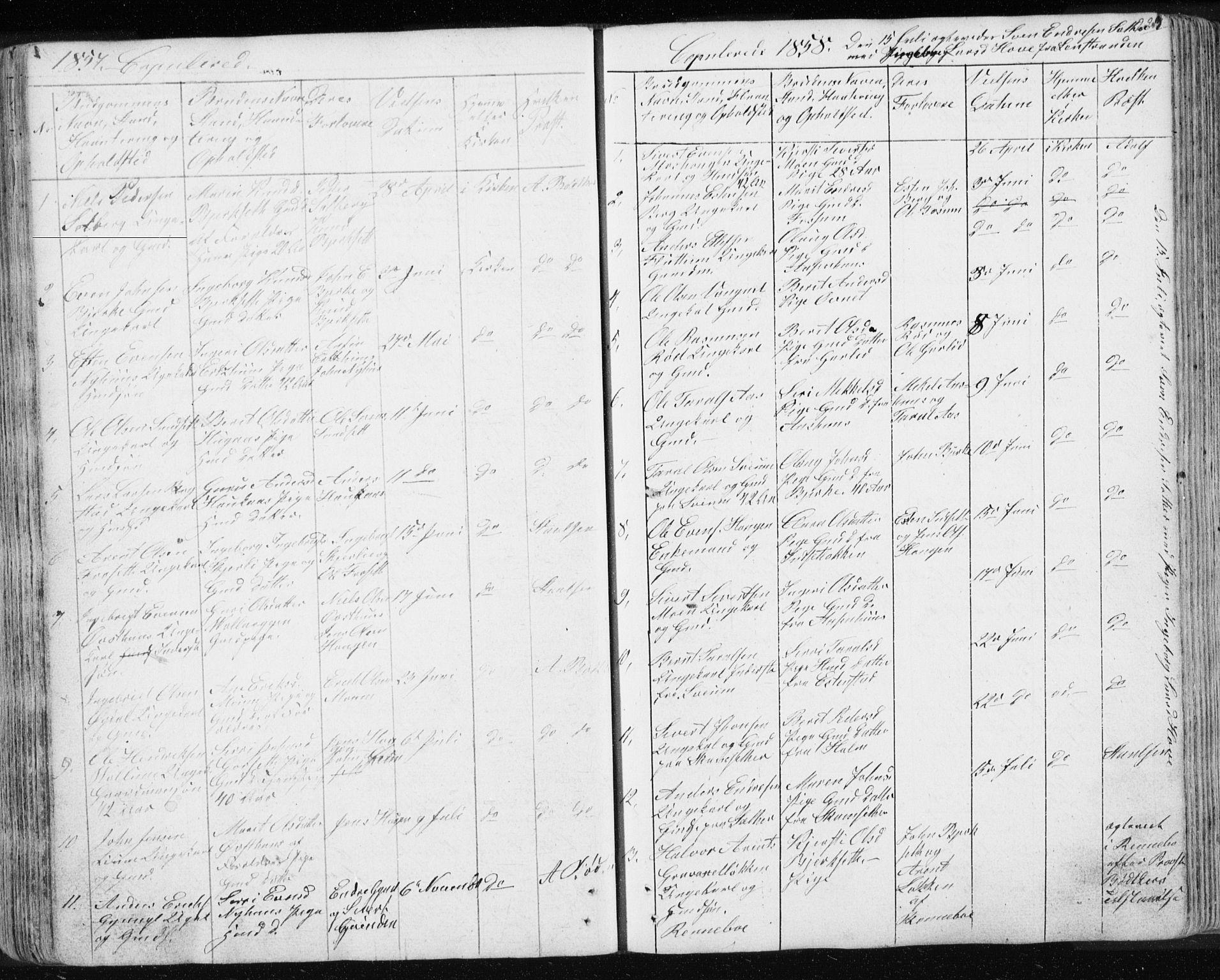 SAT, Ministerialprotokoller, klokkerbøker og fødselsregistre - Sør-Trøndelag, 689/L1043: Klokkerbok nr. 689C02, 1816-1892, s. 223