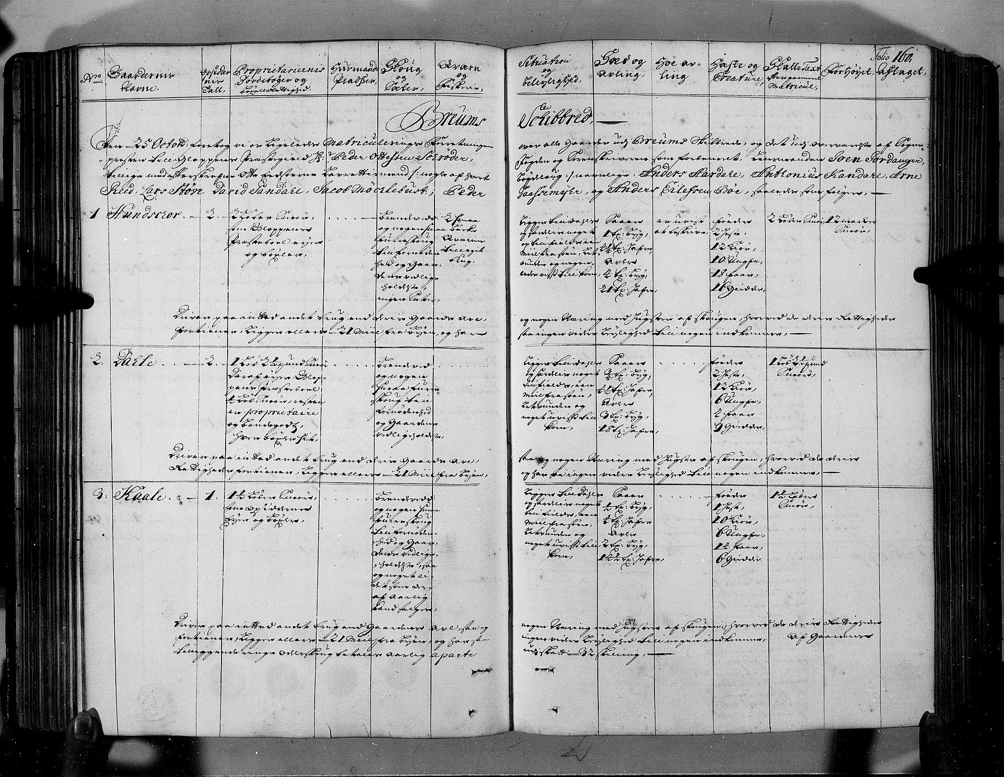 RA, Rentekammeret inntil 1814, Realistisk ordnet avdeling, N/Nb/Nbf/L0146: Sunnfjord og Nordfjord eksaminasjonsprotokoll, 1723, s. 159b-160a