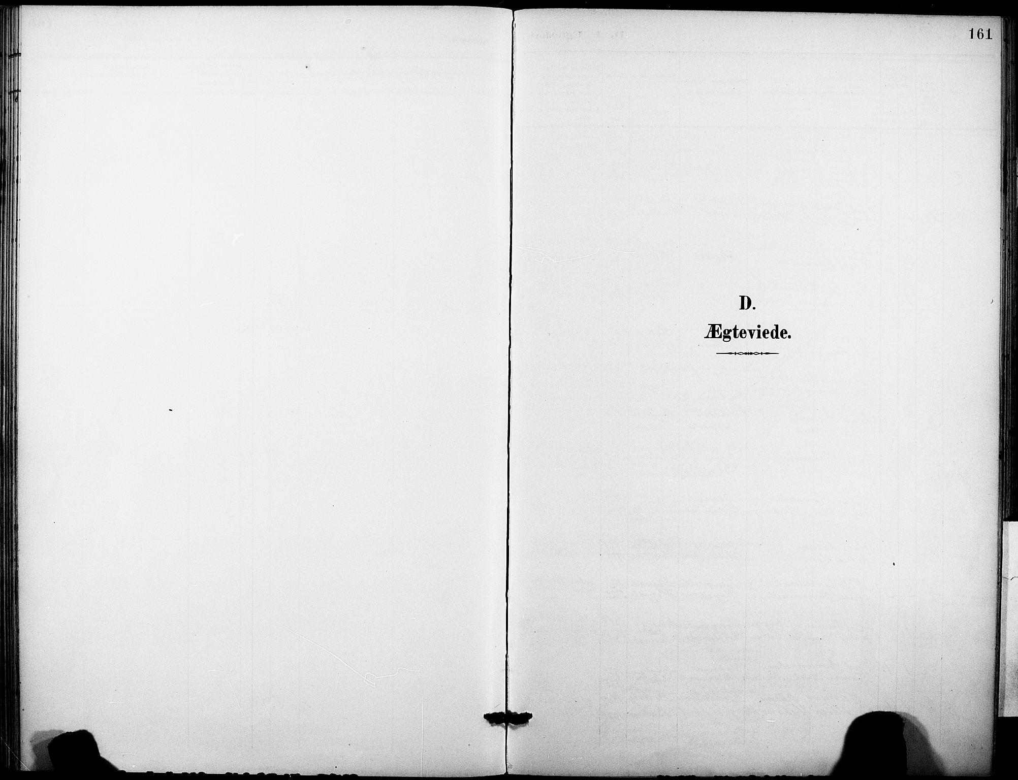 SAKO, Holla kirkebøker, F/Fa/L0010: Ministerialbok nr. 10, 1897-1907, s. 161