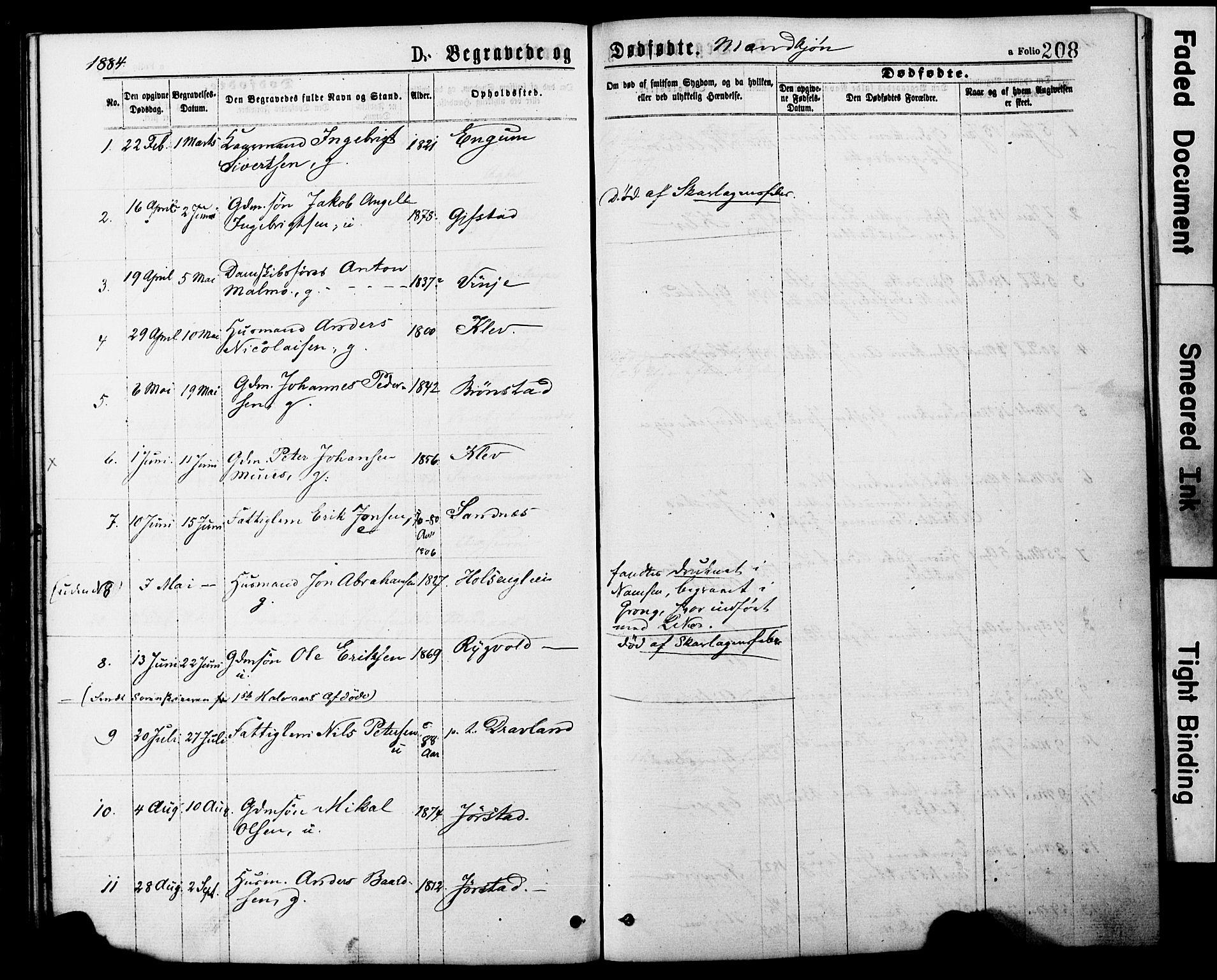 SAT, Ministerialprotokoller, klokkerbøker og fødselsregistre - Nord-Trøndelag, 749/L0473: Ministerialbok nr. 749A07, 1873-1887, s. 208