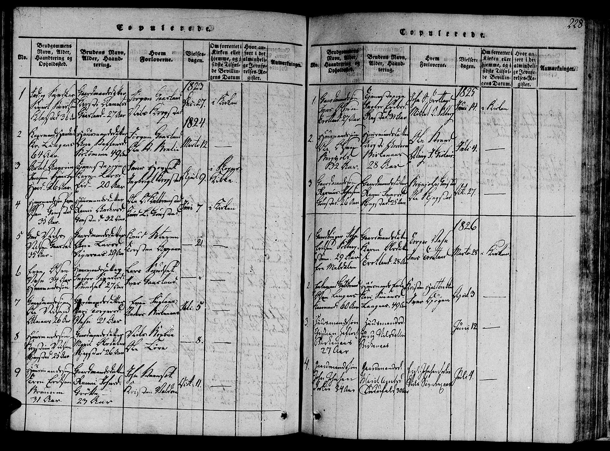 SAT, Ministerialprotokoller, klokkerbøker og fødselsregistre - Sør-Trøndelag, 691/L1068: Ministerialbok nr. 691A03 /4, 1816-1826, s. 228