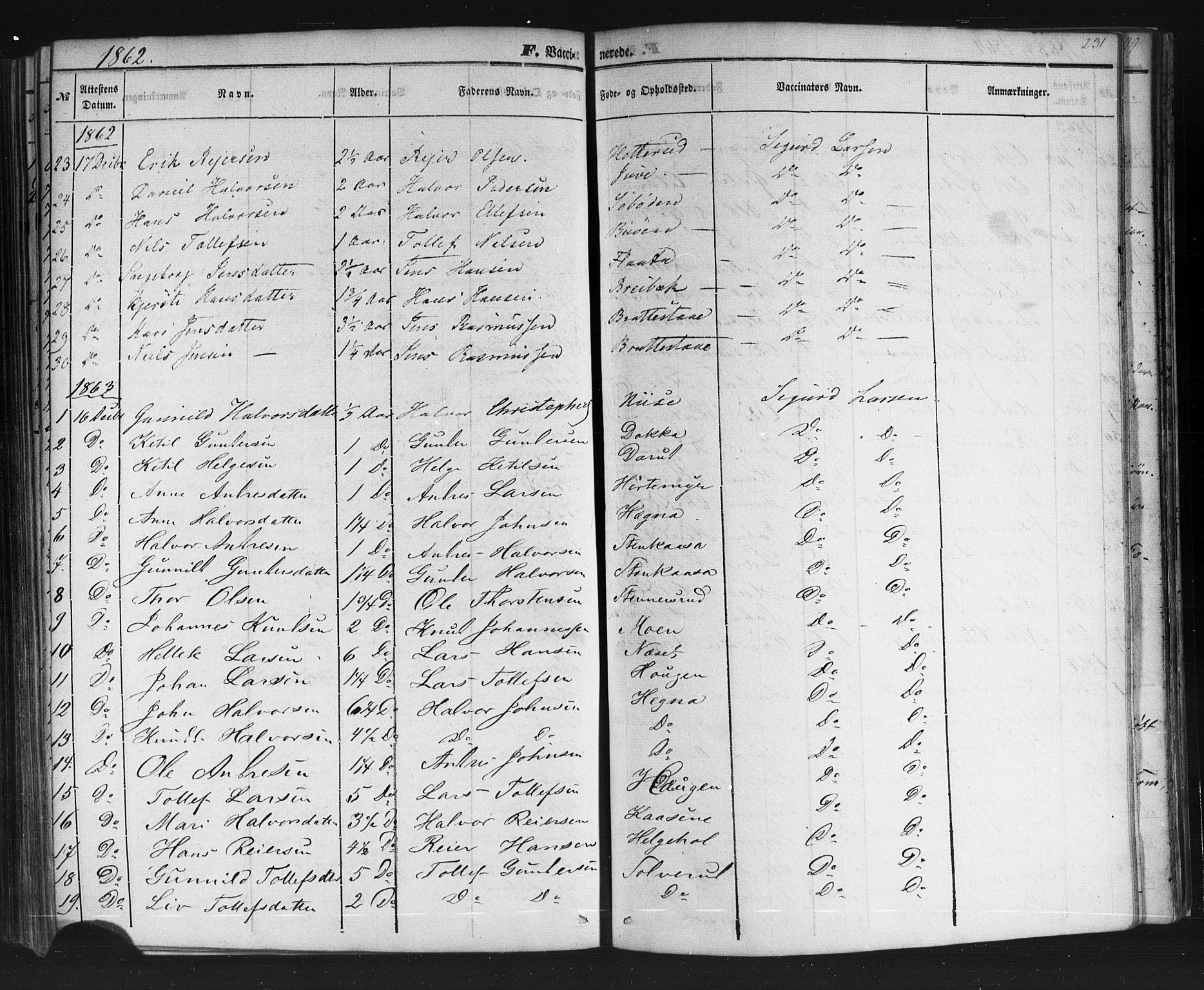 SAKO, Sauherad kirkebøker, F/Fb/L0001: Ministerialbok nr. II 1, 1851-1877, s. 231