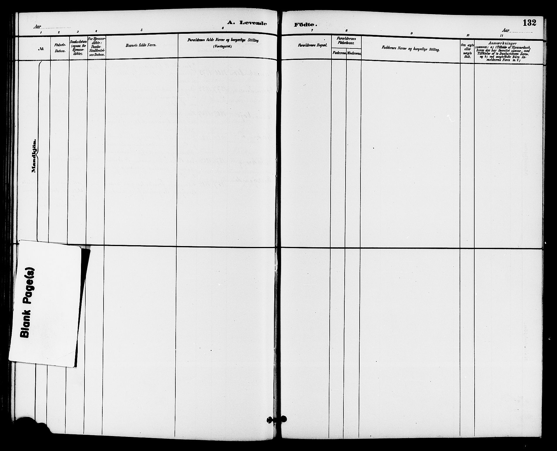 SAKO, Drangedal kirkebøker, G/Ga/L0003: Klokkerbok nr. I 3, 1887-1906, s. 132