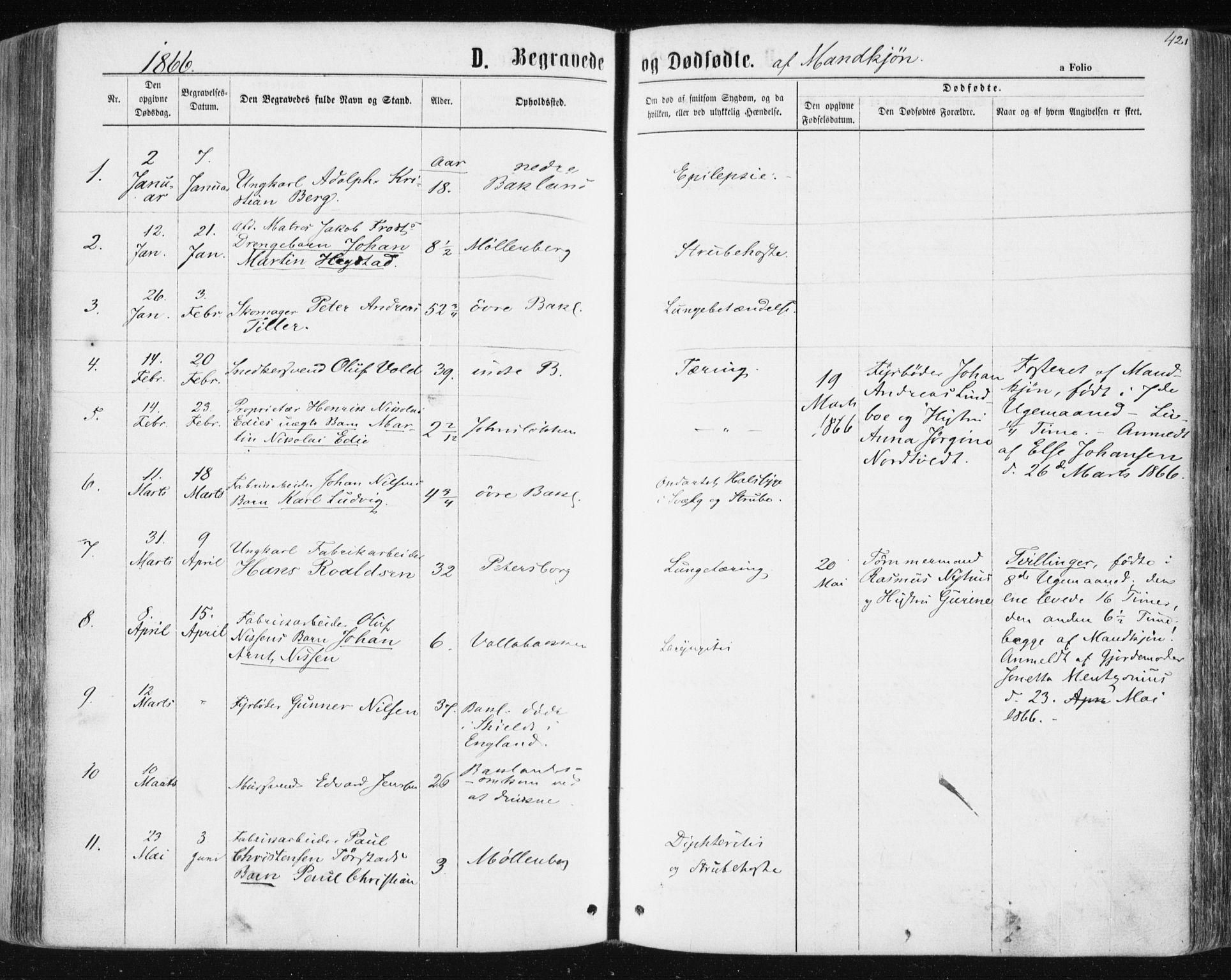 SAT, Ministerialprotokoller, klokkerbøker og fødselsregistre - Sør-Trøndelag, 604/L0186: Ministerialbok nr. 604A07, 1866-1877, s. 421