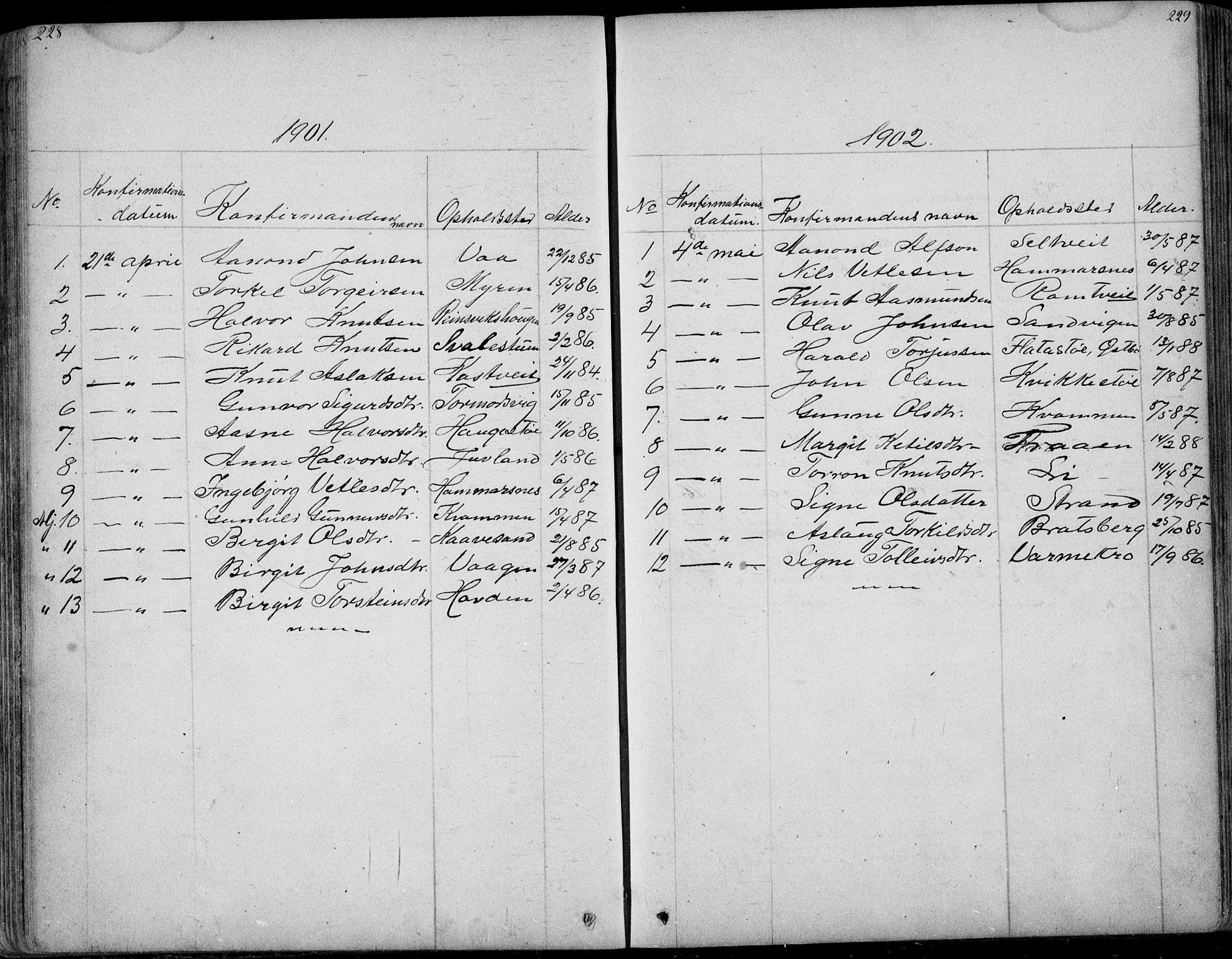 SAKO, Rauland kirkebøker, G/Ga/L0002: Klokkerbok nr. I 2, 1849-1935, s. 228-229