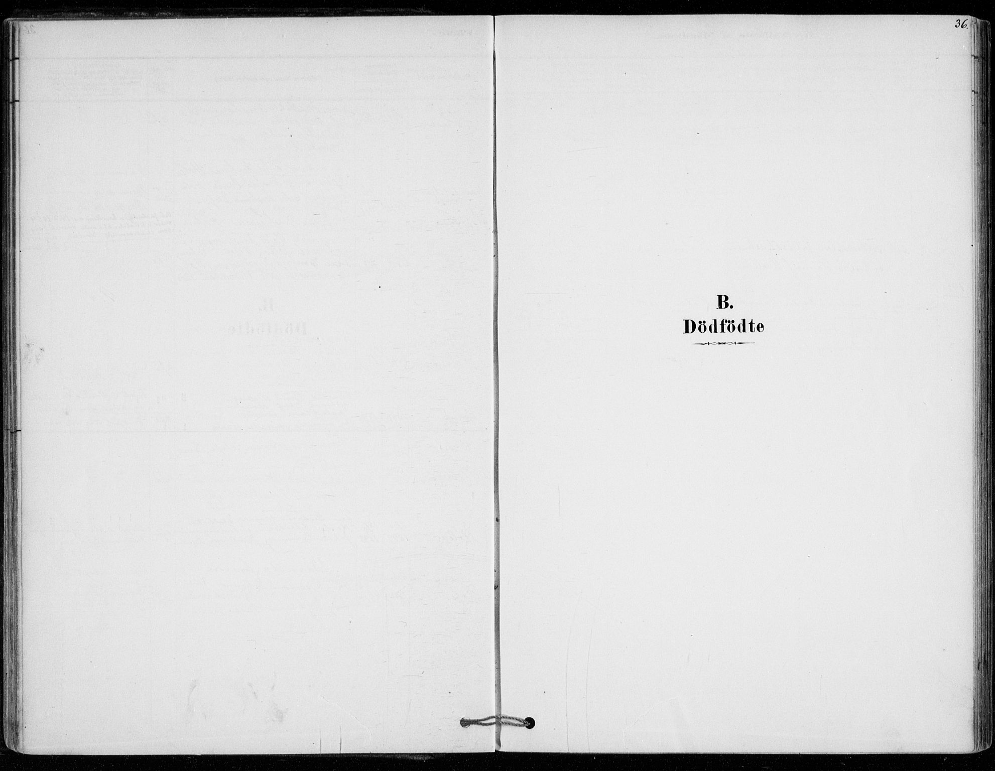 SAO, Vestby prestekontor Kirkebøker, F/Fe/L0001: Ministerialbok nr. V 1, 1878-1931, s. 36