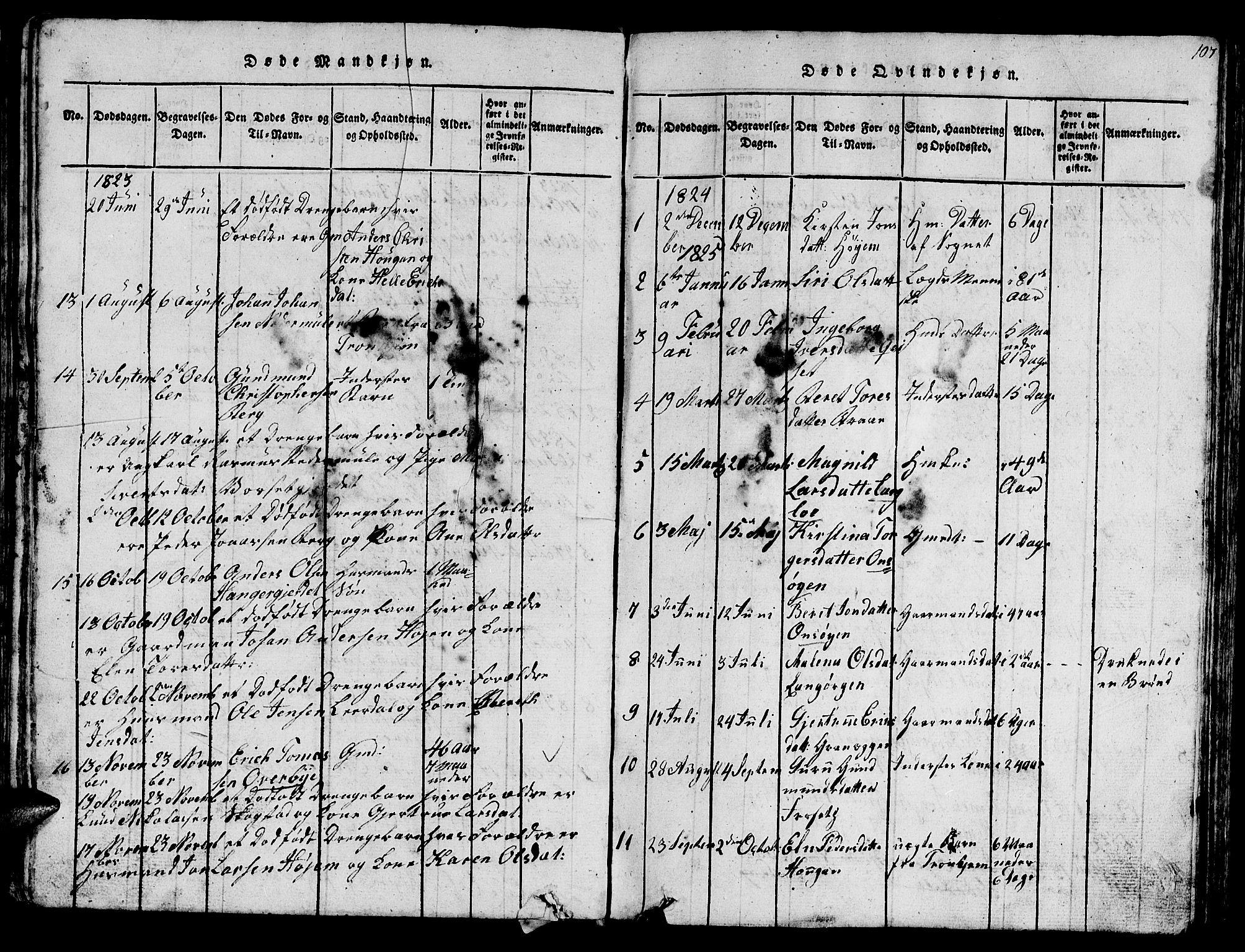 SAT, Ministerialprotokoller, klokkerbøker og fødselsregistre - Sør-Trøndelag, 612/L0385: Klokkerbok nr. 612C01, 1816-1845, s. 107