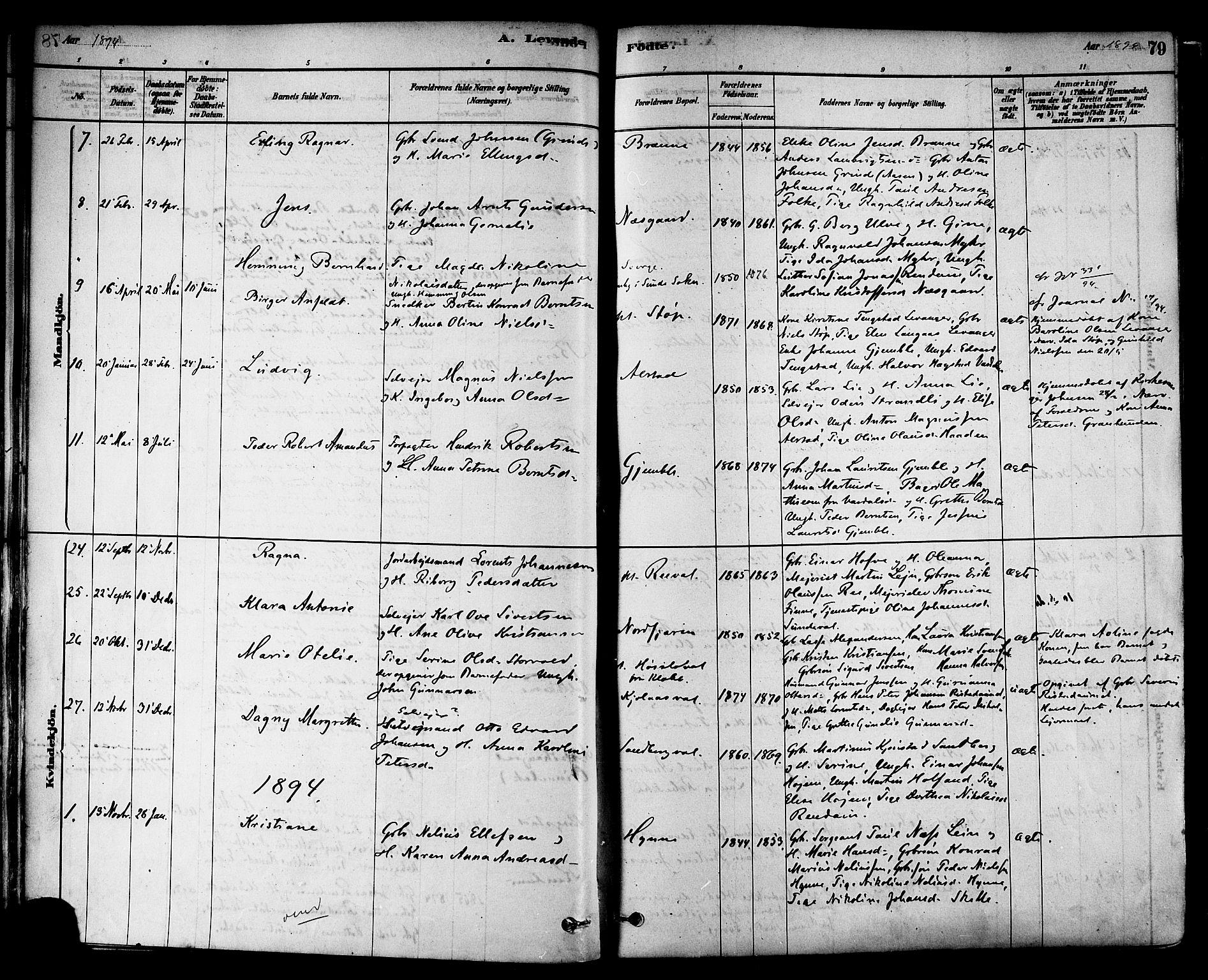 SAT, Ministerialprotokoller, klokkerbøker og fødselsregistre - Nord-Trøndelag, 717/L0159: Ministerialbok nr. 717A09, 1878-1898, s. 79