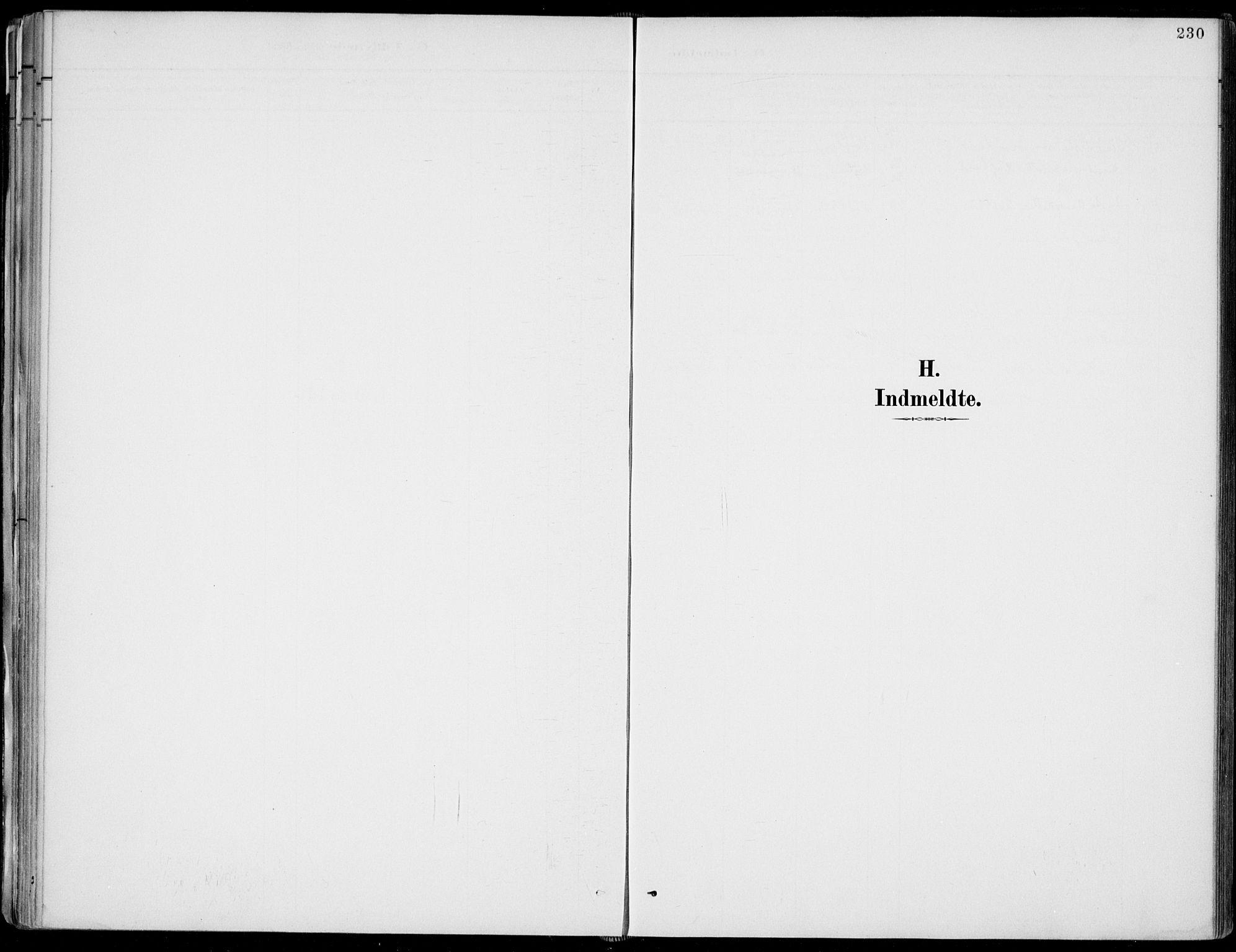 SAKO, Fyresdal kirkebøker, F/Fa/L0007: Ministerialbok nr. I 7, 1887-1914, s. 230