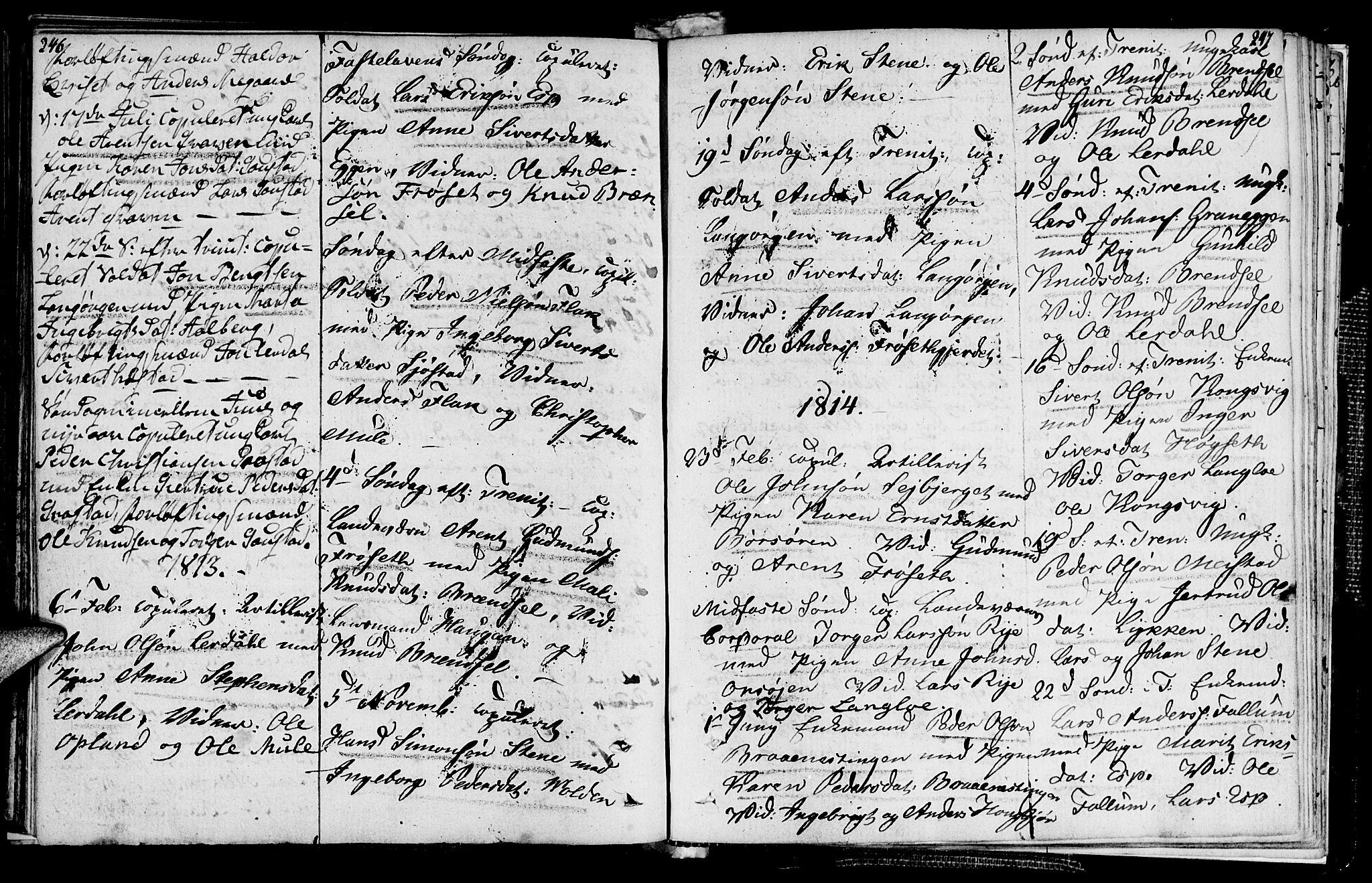 SAT, Ministerialprotokoller, klokkerbøker og fødselsregistre - Sør-Trøndelag, 612/L0371: Ministerialbok nr. 612A05, 1803-1816, s. 246-247