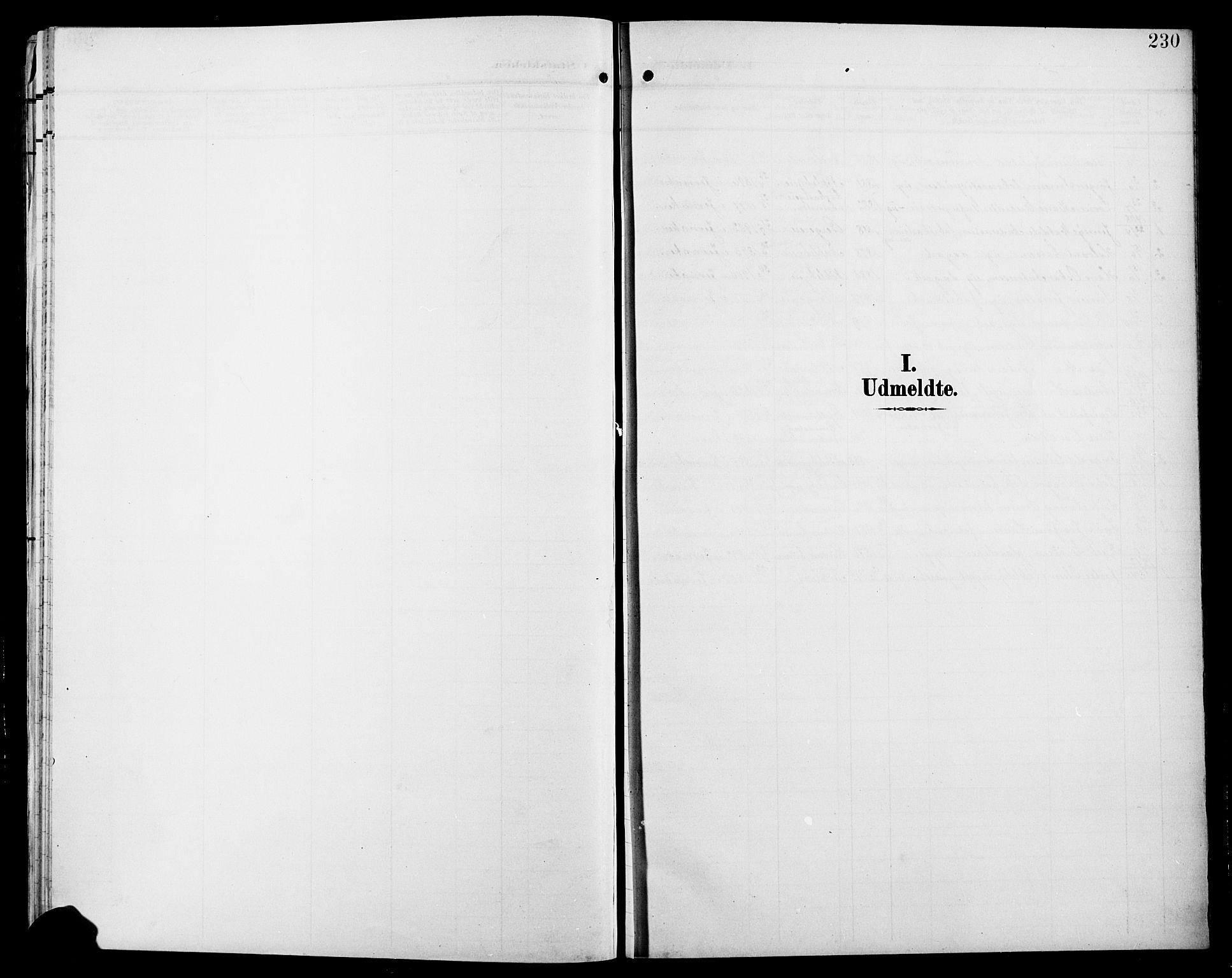 SAH, Jevnaker prestekontor, Klokkerbok nr. 4, 1907-1918, s. 230