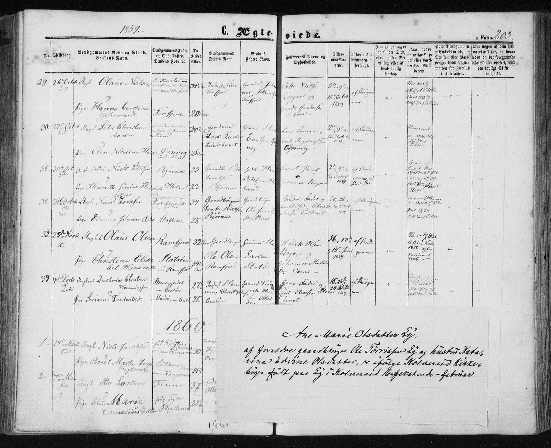 SAT, Ministerialprotokoller, klokkerbøker og fødselsregistre - Nord-Trøndelag, 780/L0641: Ministerialbok nr. 780A06, 1857-1874, s. 203